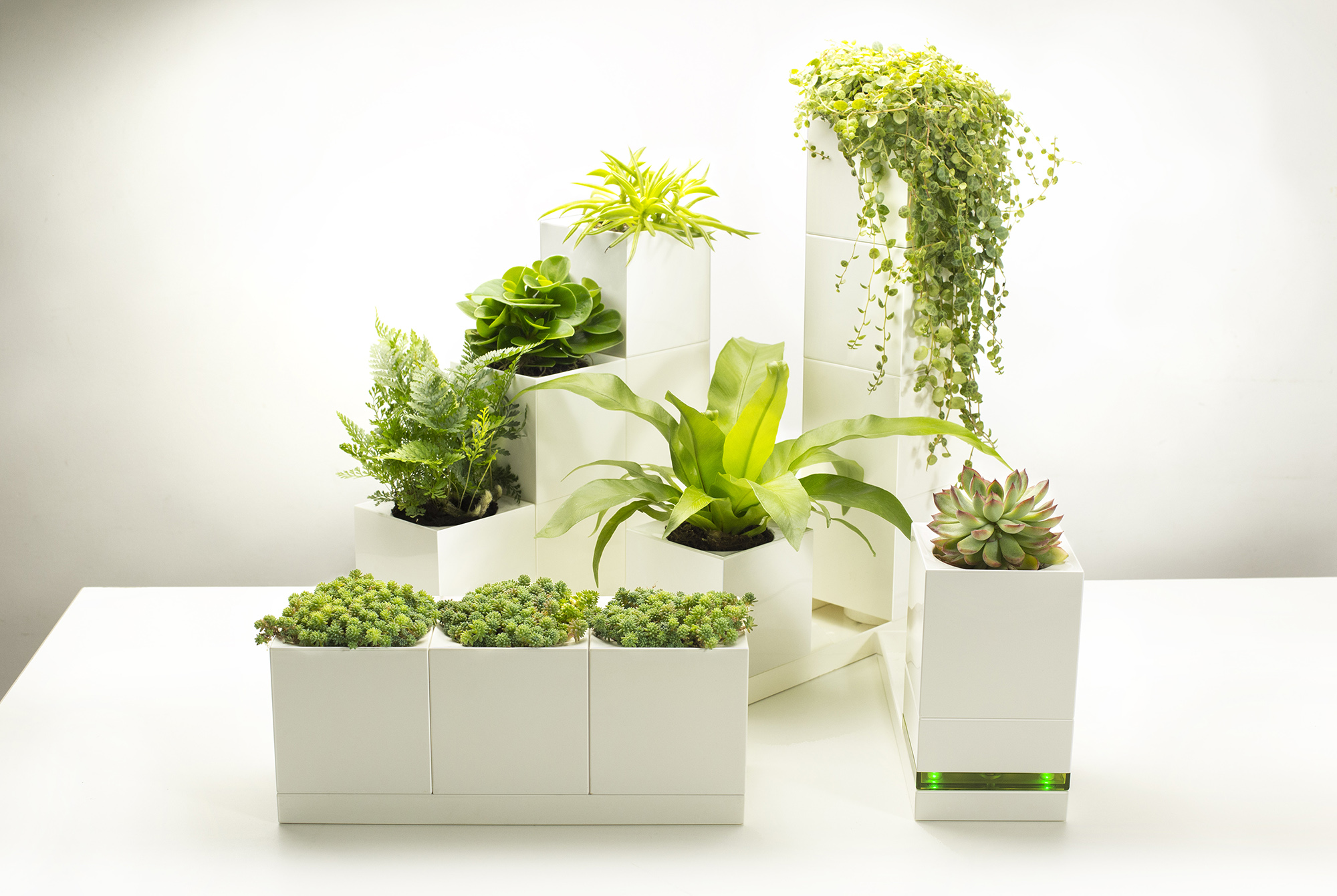 LeGrow modular planters are like Legos for indoor gardening