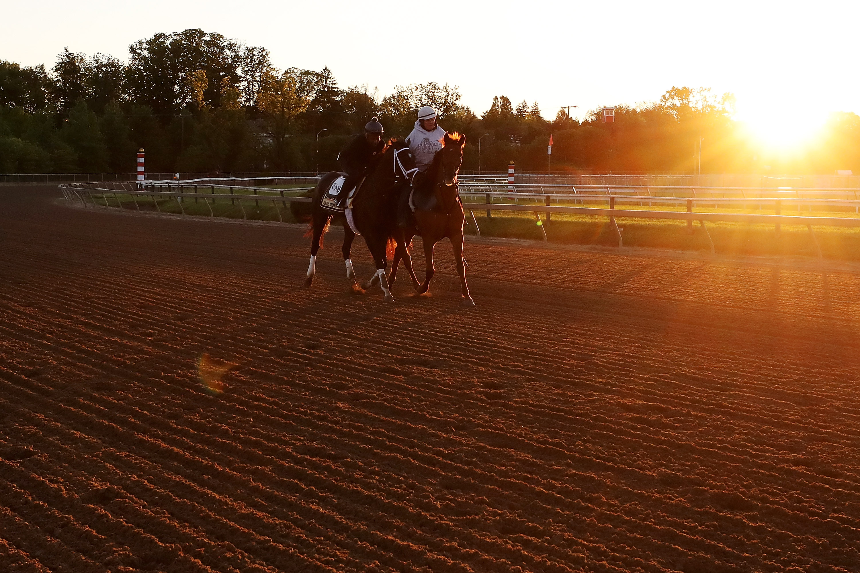 142nd Preakness Stakes - Previews