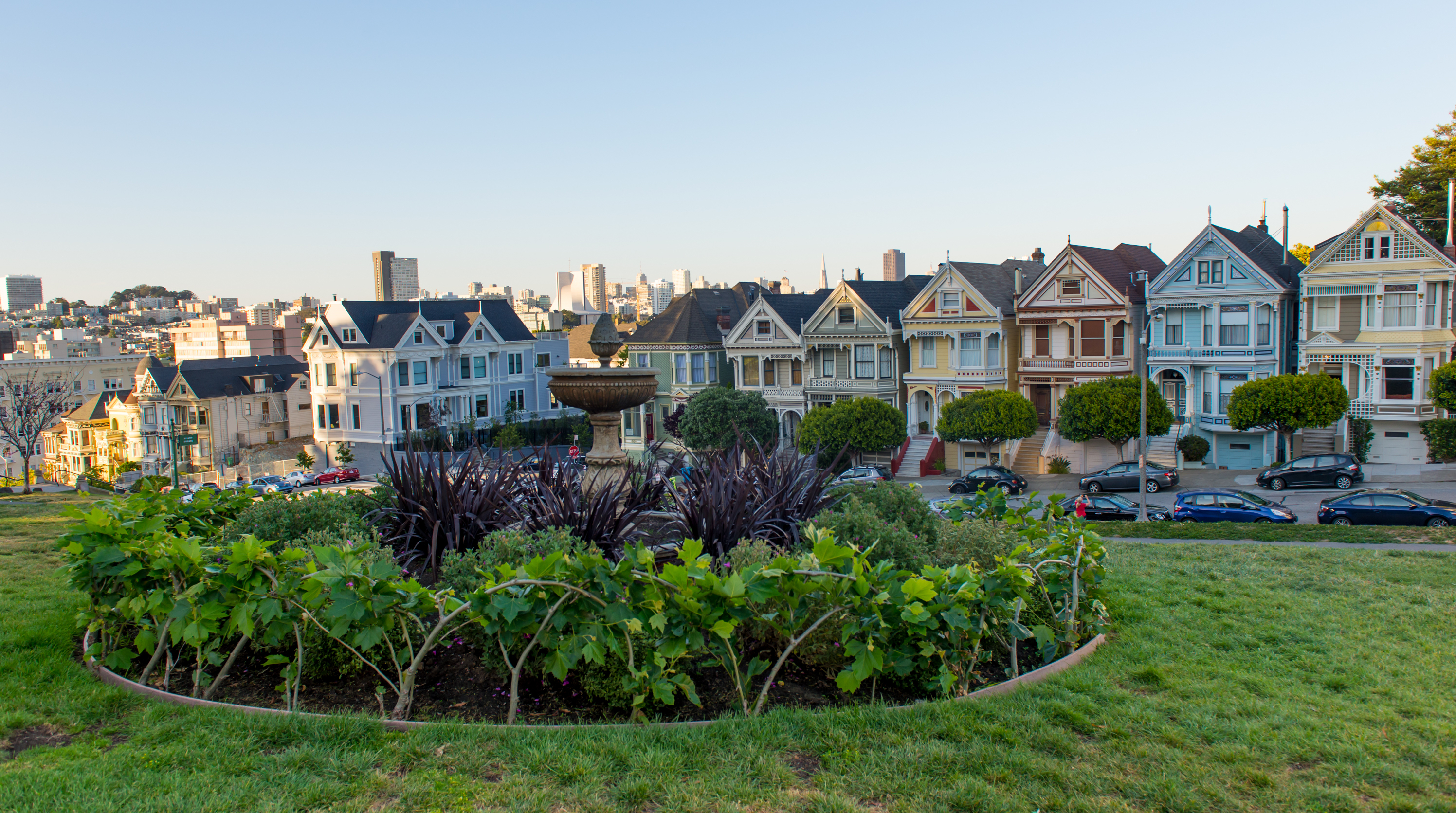 A circular planter in Alamo Square with paintd Victorians across the street.