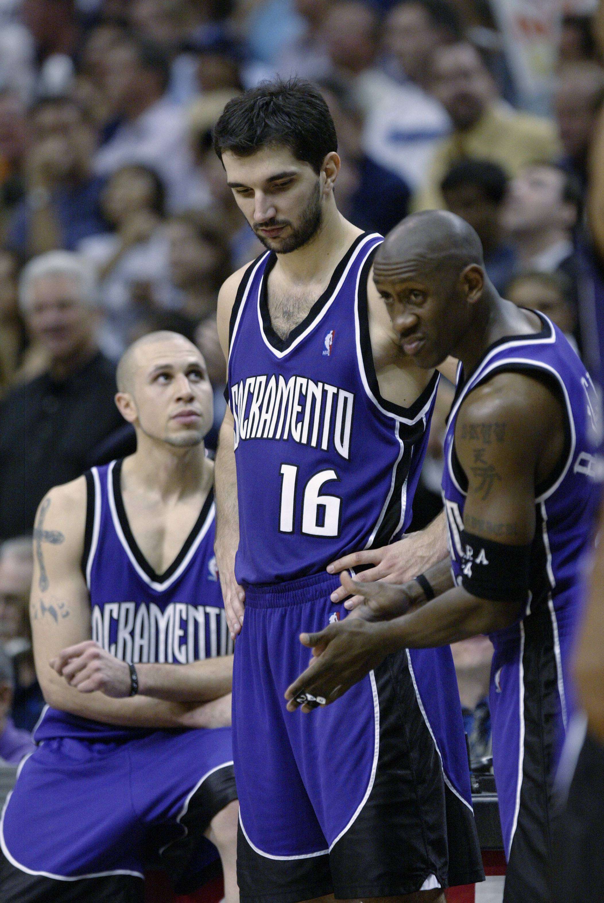 Mike Bibby, Predrag Stojakovic, and Bobby Jackson
