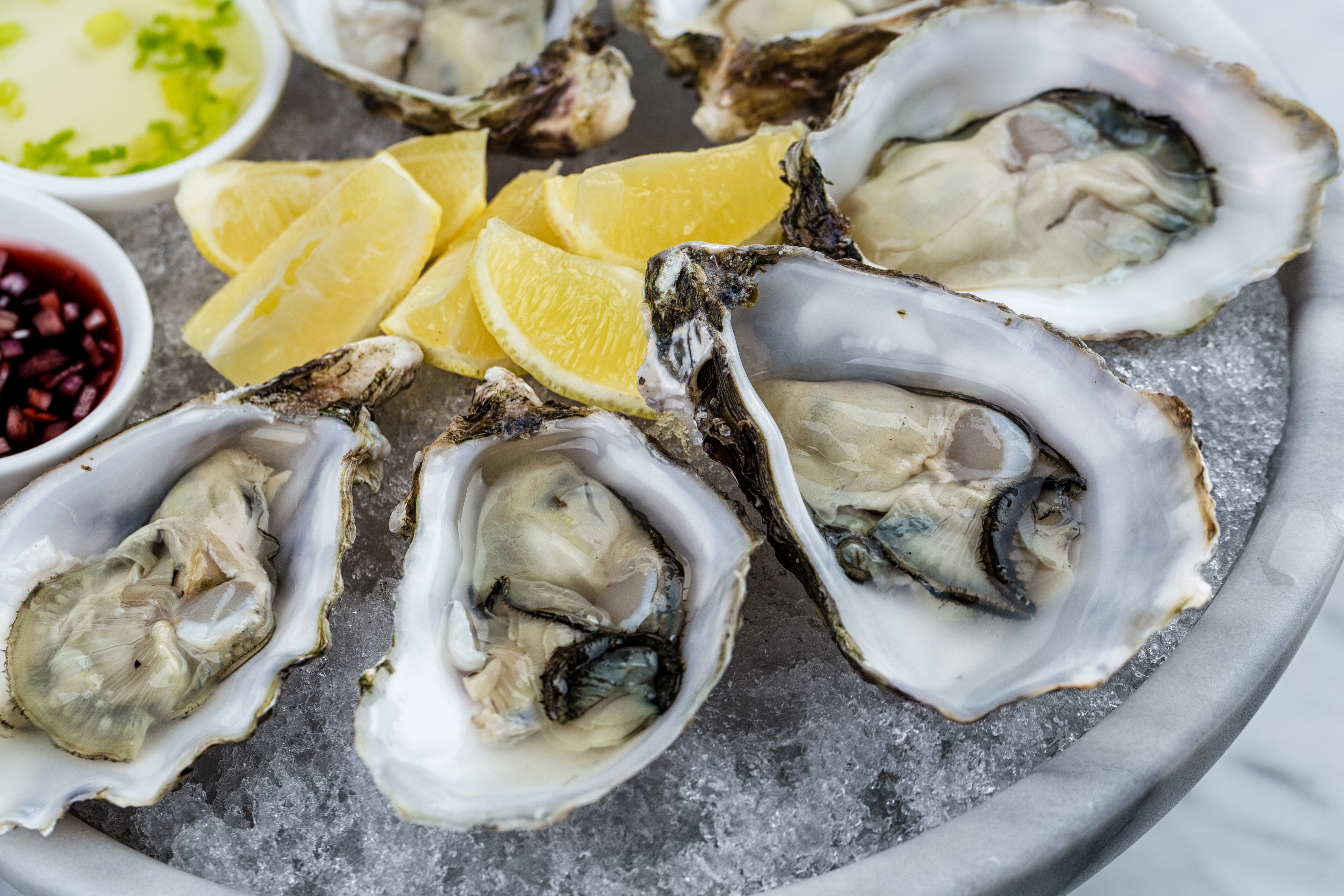 A aluminum tray of filled with ice, lemon wedges, and various sauces contains four gleaming oysters