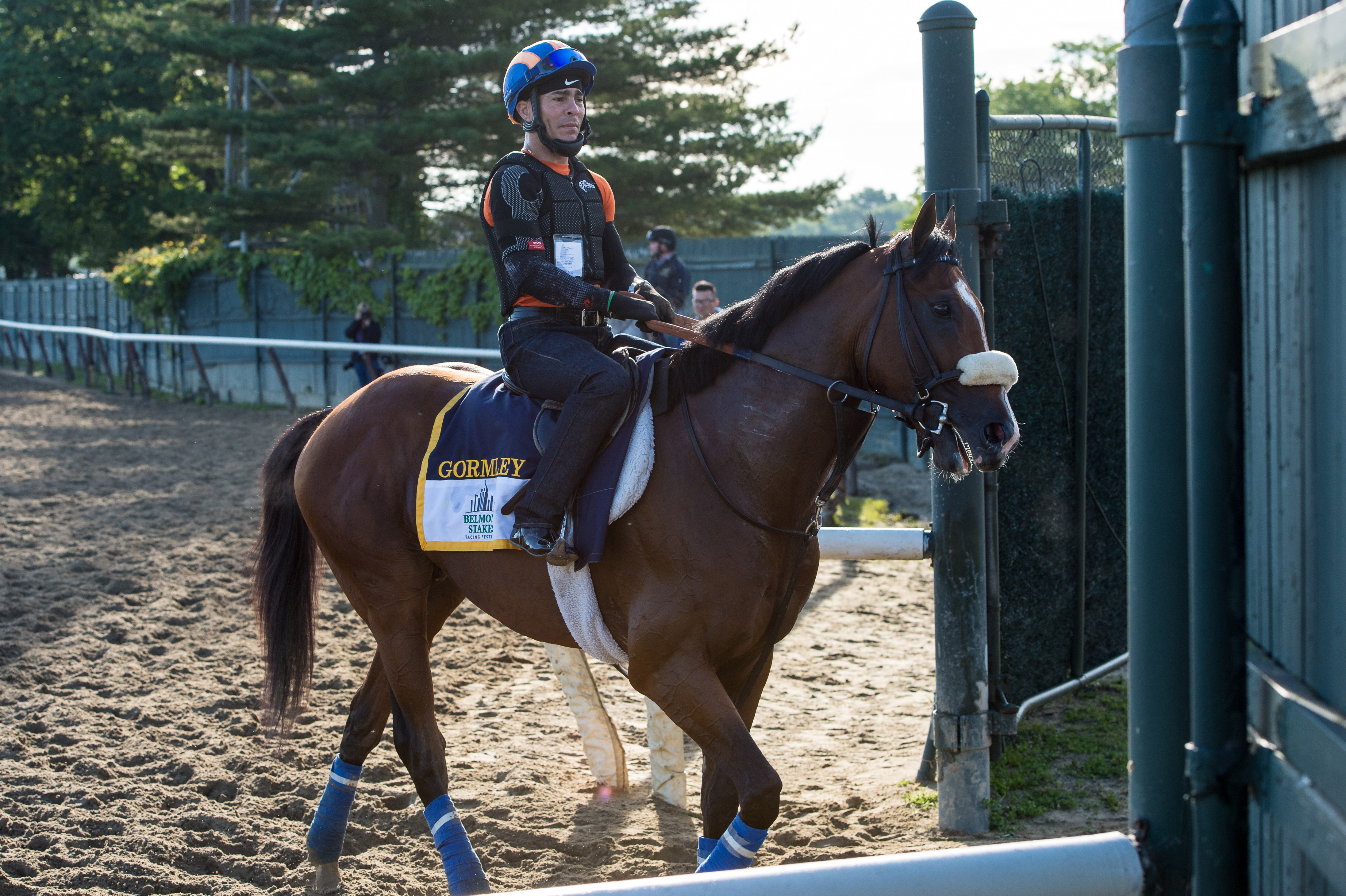 Horse Racing: Belmont Workouts