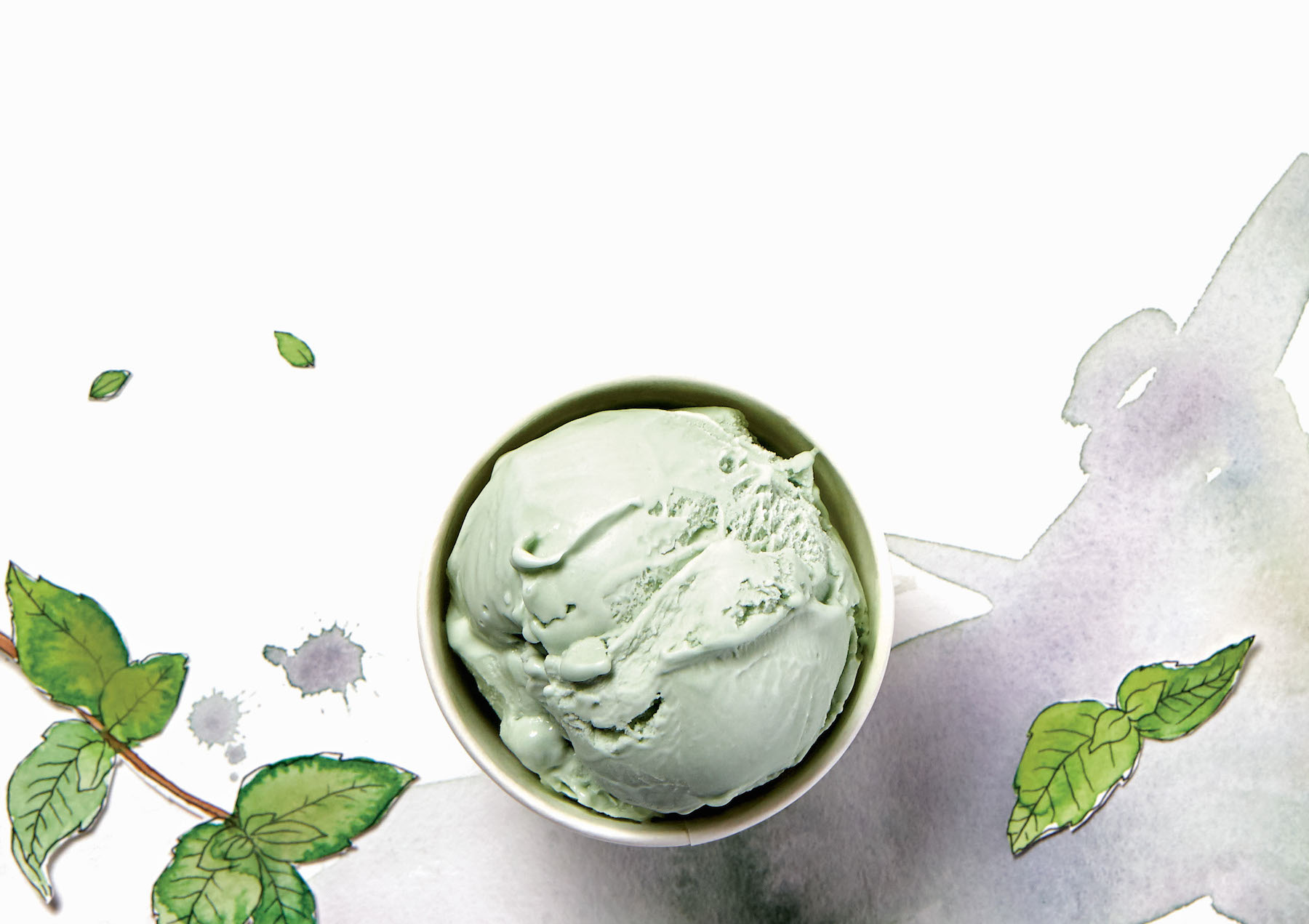 Recipe: A Cool and Creamy Peppermint Ice Cream