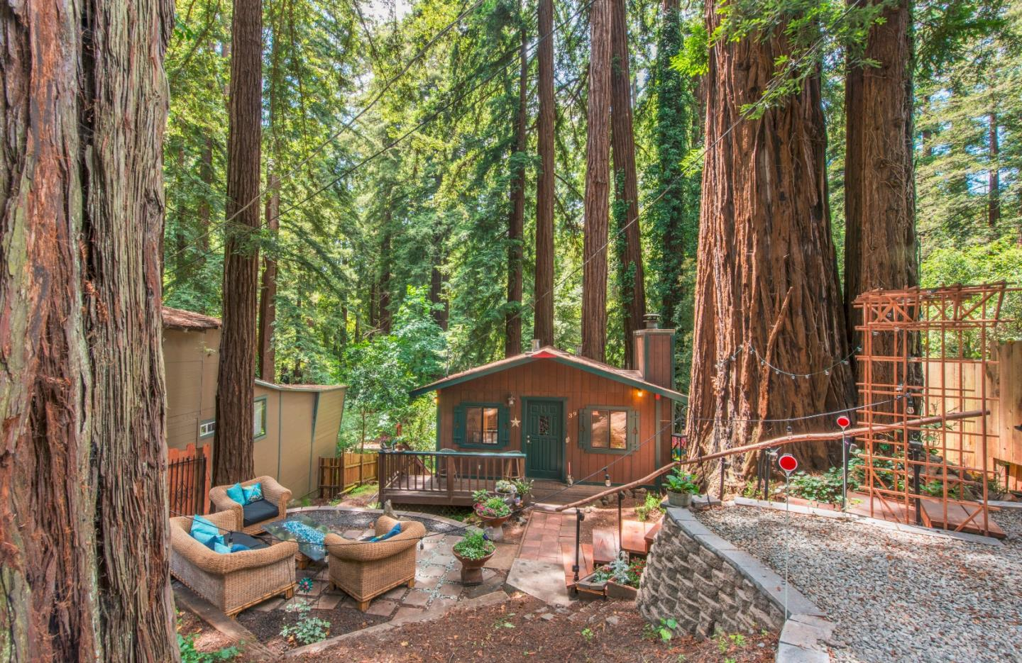 A tiny cabin amidst towering green redwood trees.