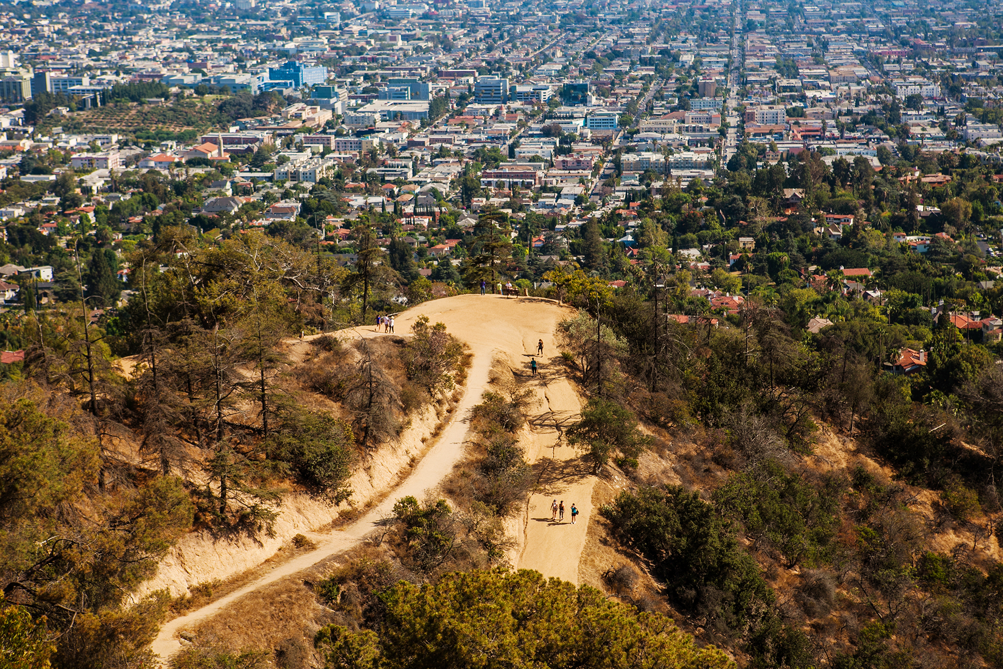 An aerial photo of a few hikers spread out on a winding trail The LA skyline is visible in the distance.