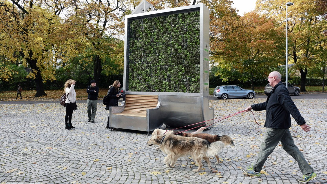 Moss-covered CityTree has the same air-purifying effect as 275 regular trees