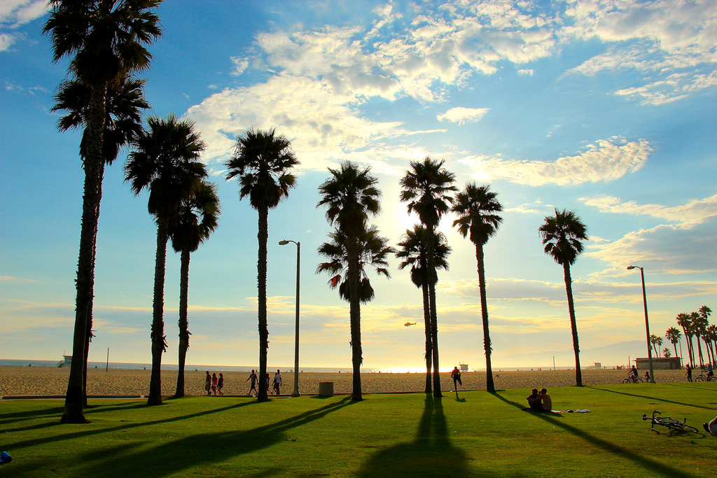 Looking out at Santa Monica Beach in the summer.