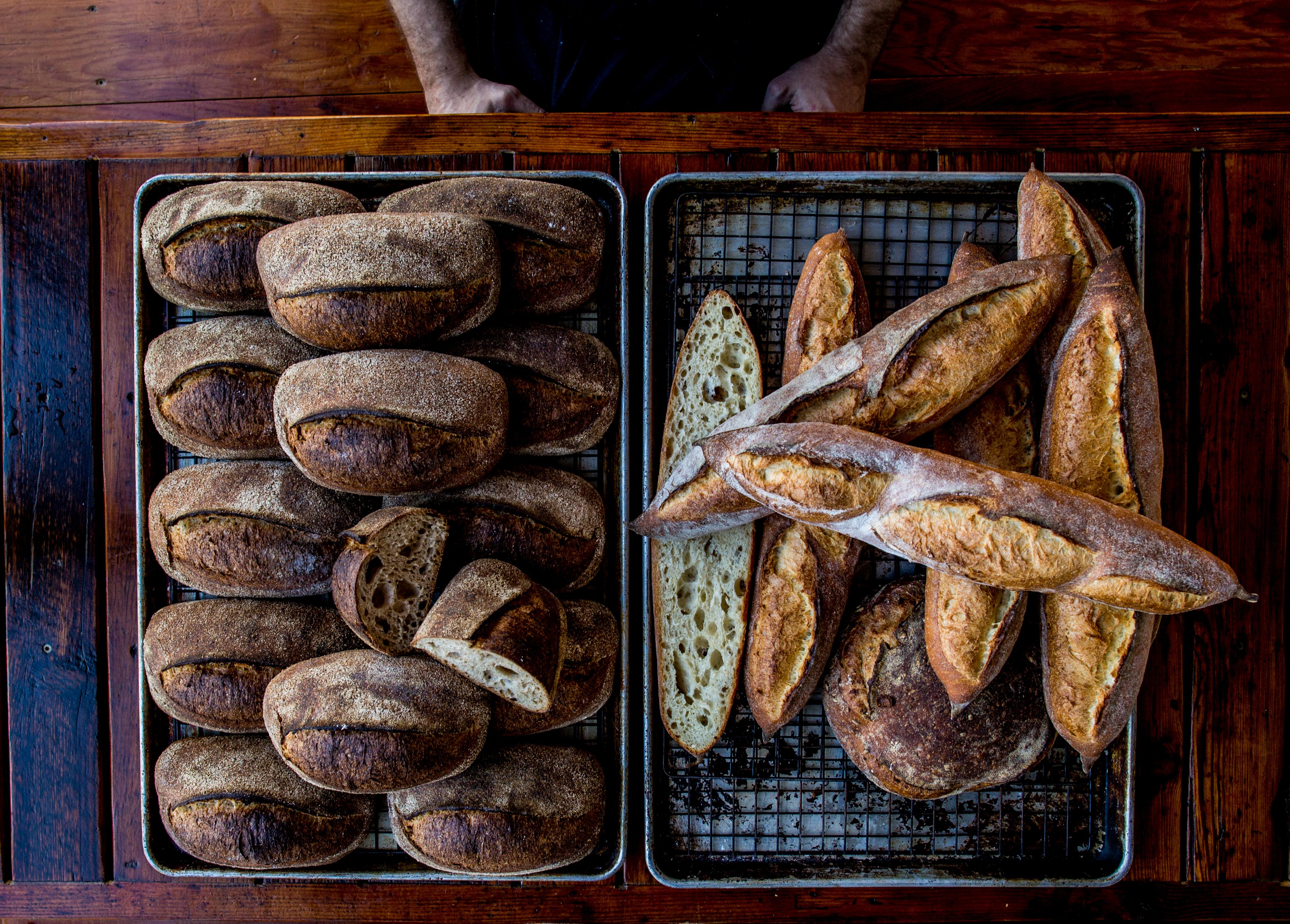Odd Duck's breads