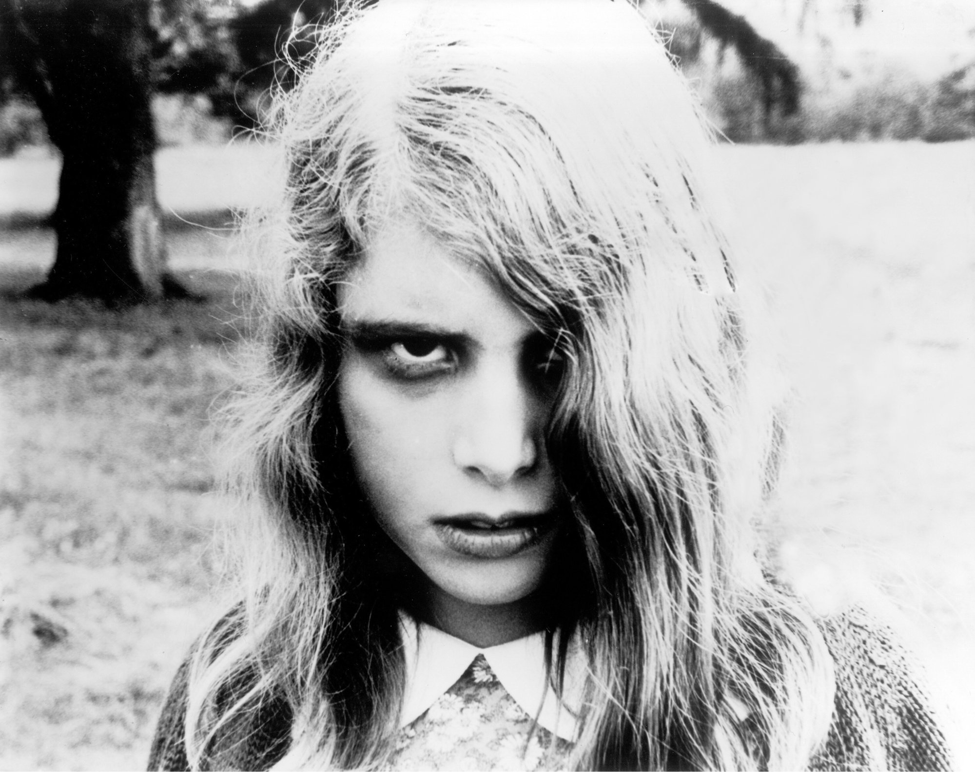 An image from Night of the Living Dead