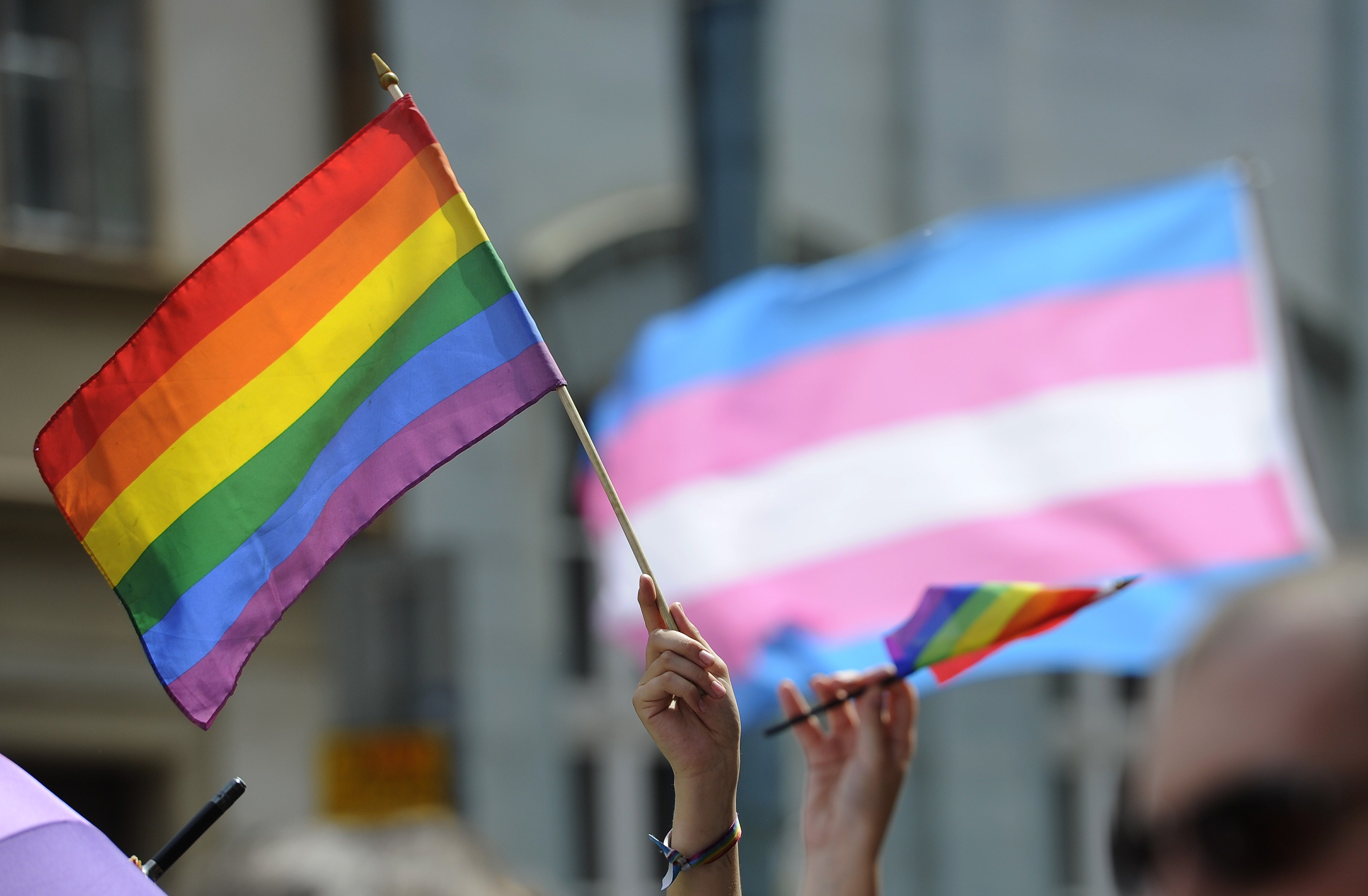 LGBTQ and trans flags.