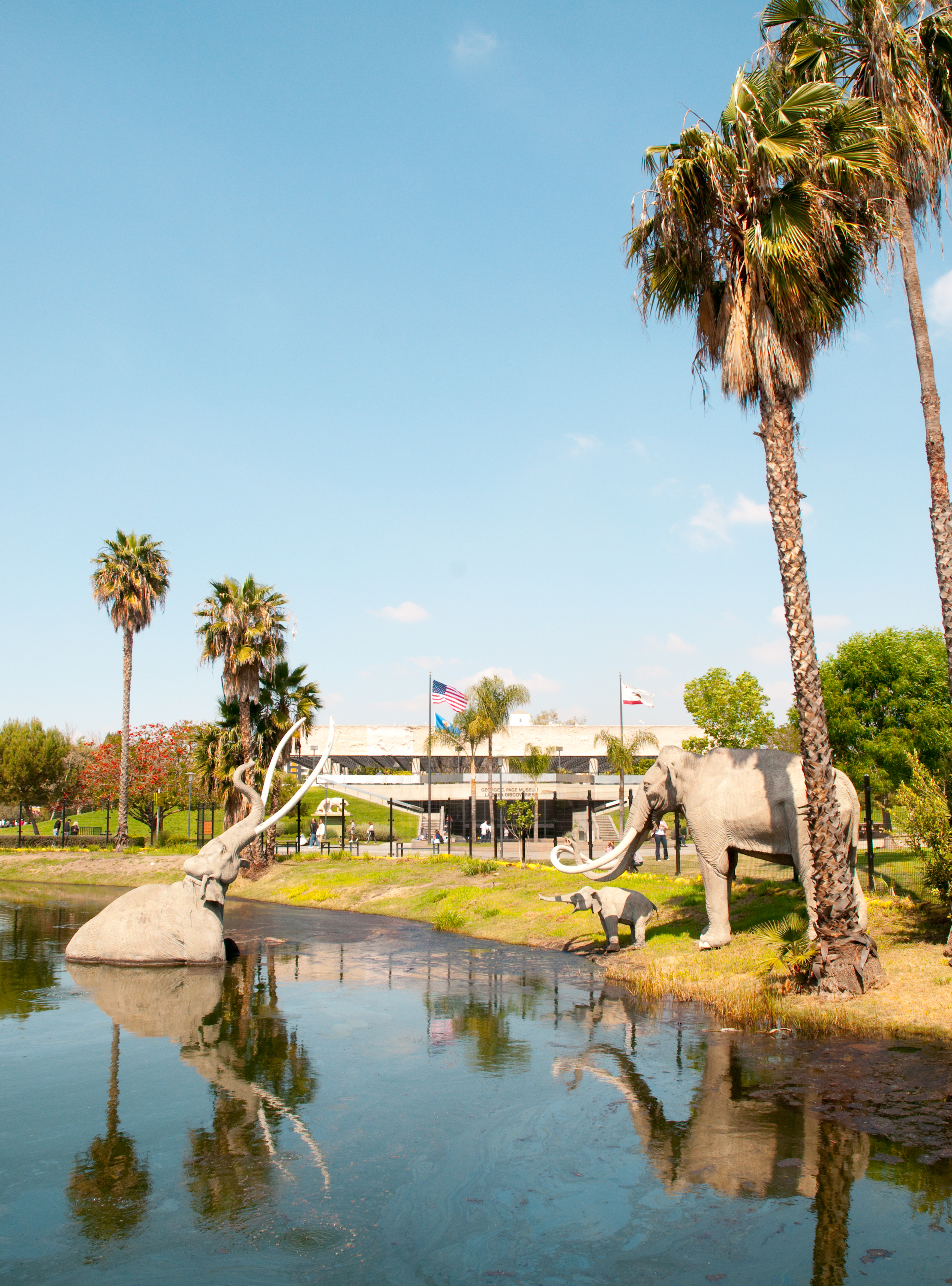 Three wooly mammoth statues in and around a lake surrounded by grass and palm trees on a sunny day.