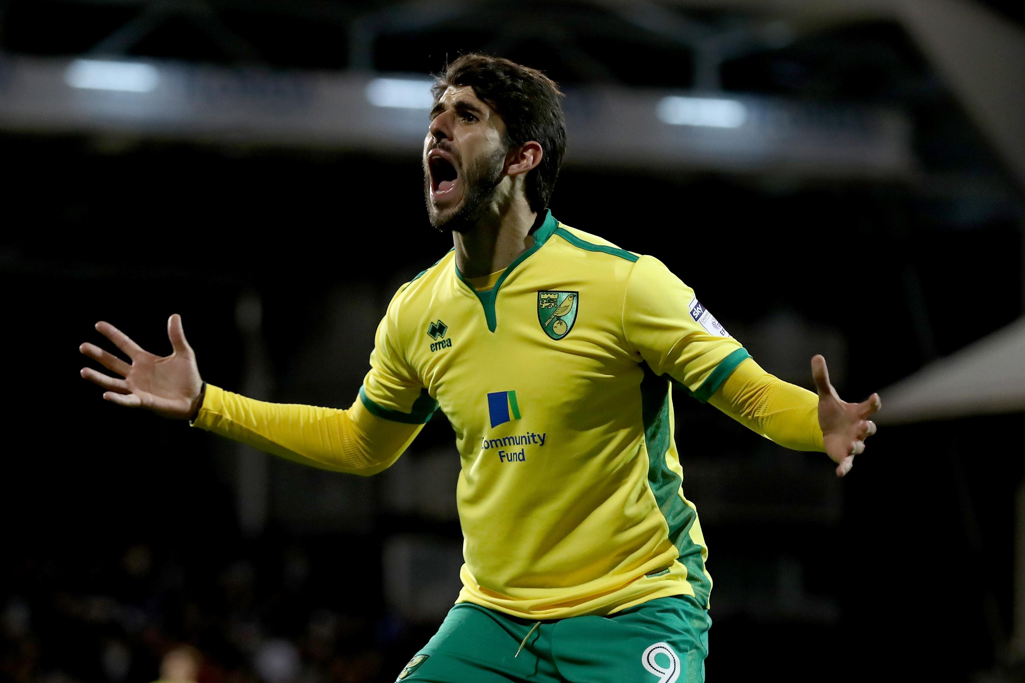 Fulham v Norwich City - Sky Bet Championship
