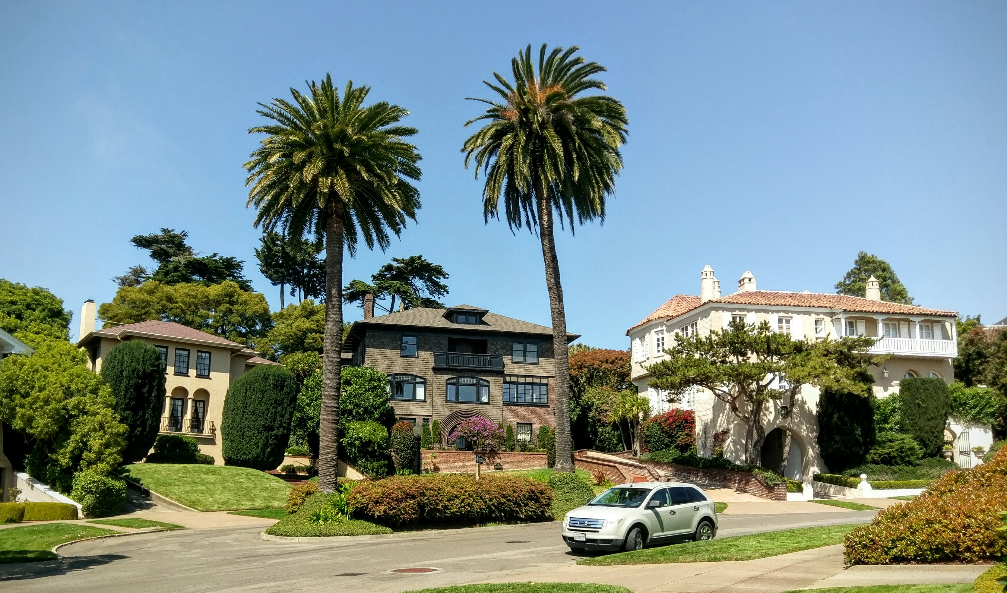 Expensive homes and palm trees in Presidio Terrace.