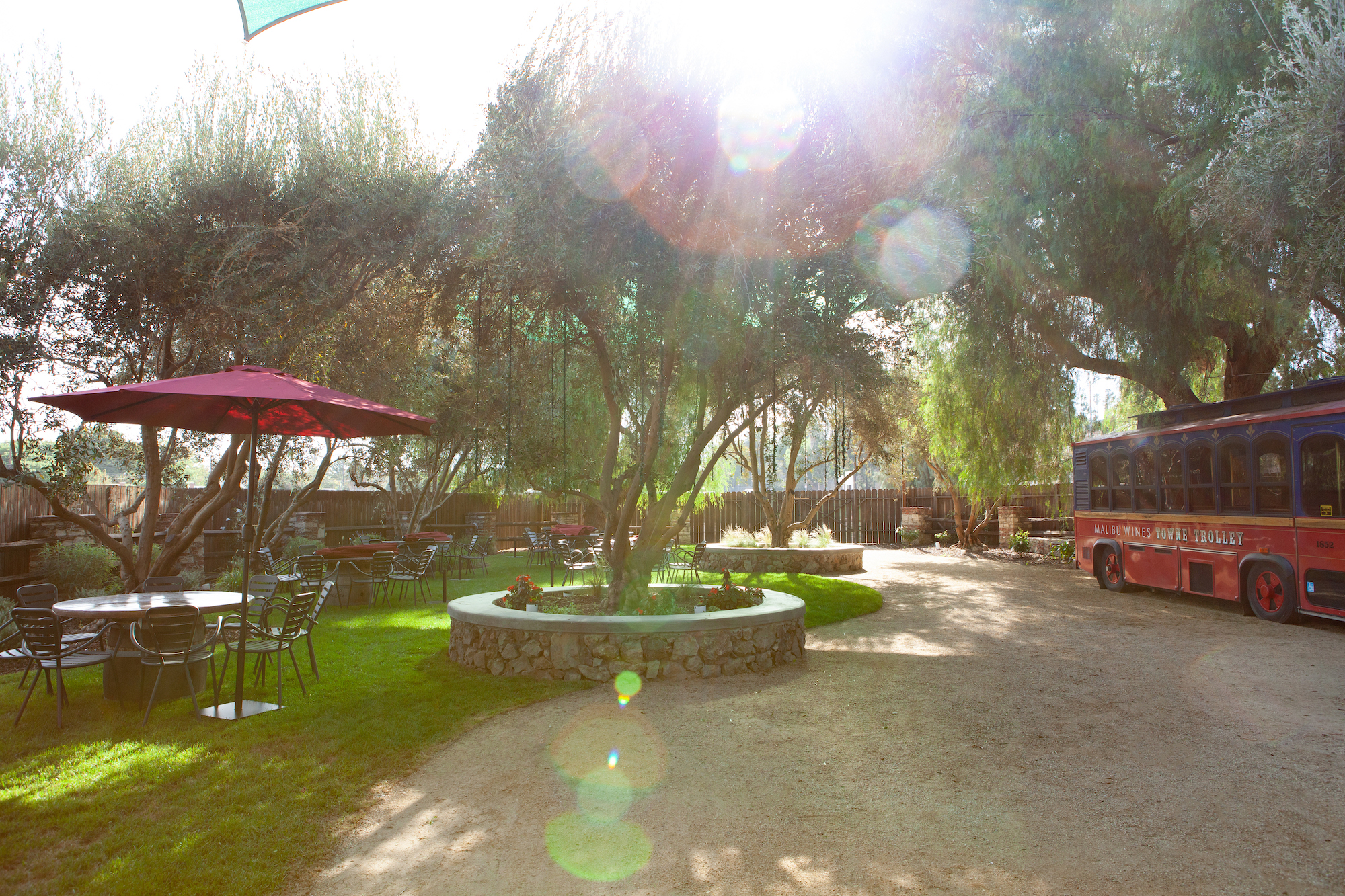Malibu Wines and Beer Garden shown in the summer sun with a red collection of umbrellas and tables.