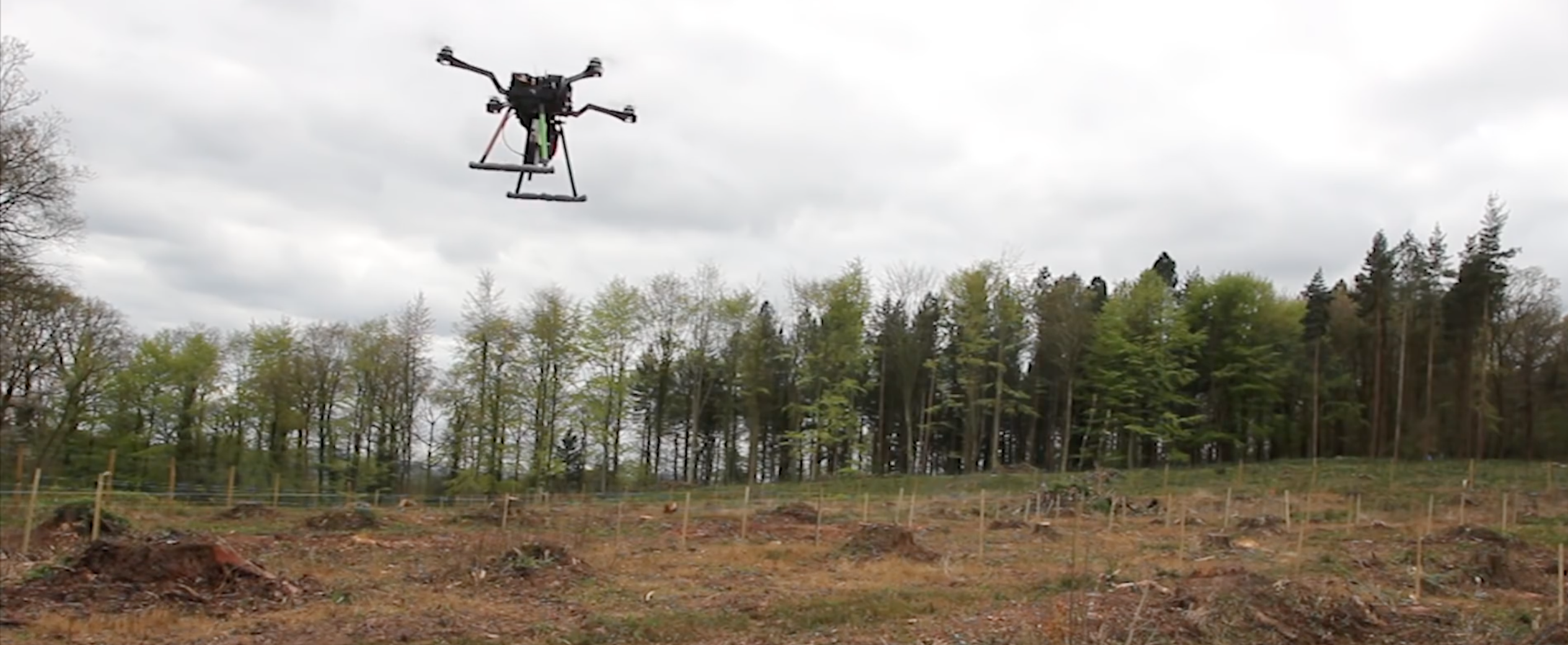 Tree-planting drones can sow 100,000 seeds a day