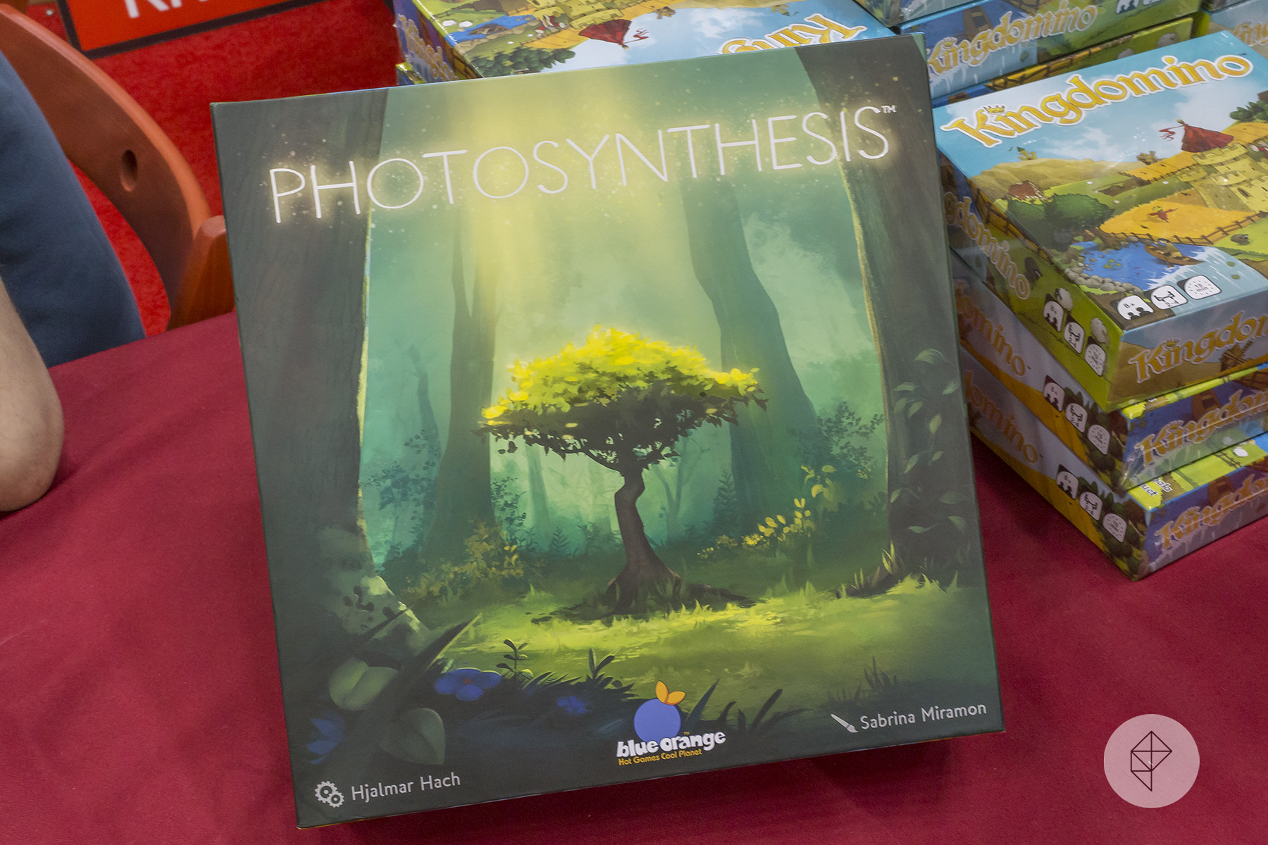 The cover of Photosynthesis shows a small tree in a forest clearing. Bright sunlight streams down.