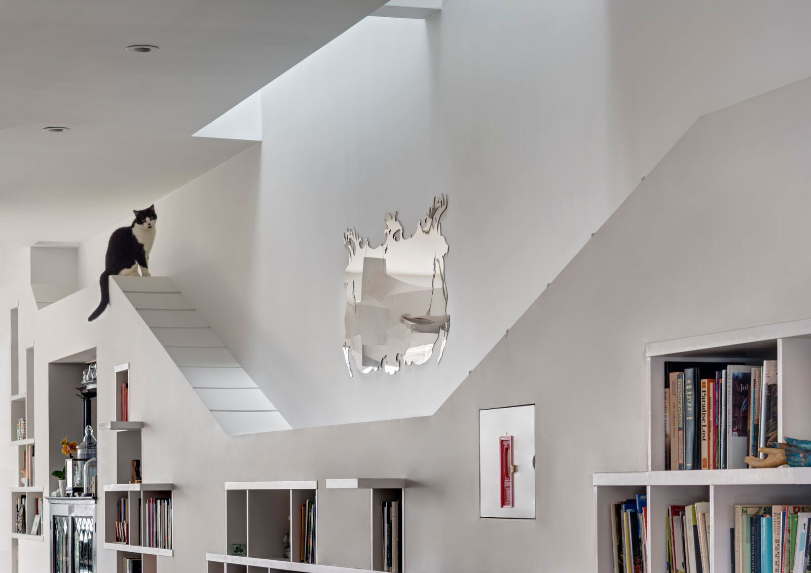 A Dated Brooklyn Townhouse Is Transformed Into Cat Friendly Sanctuary