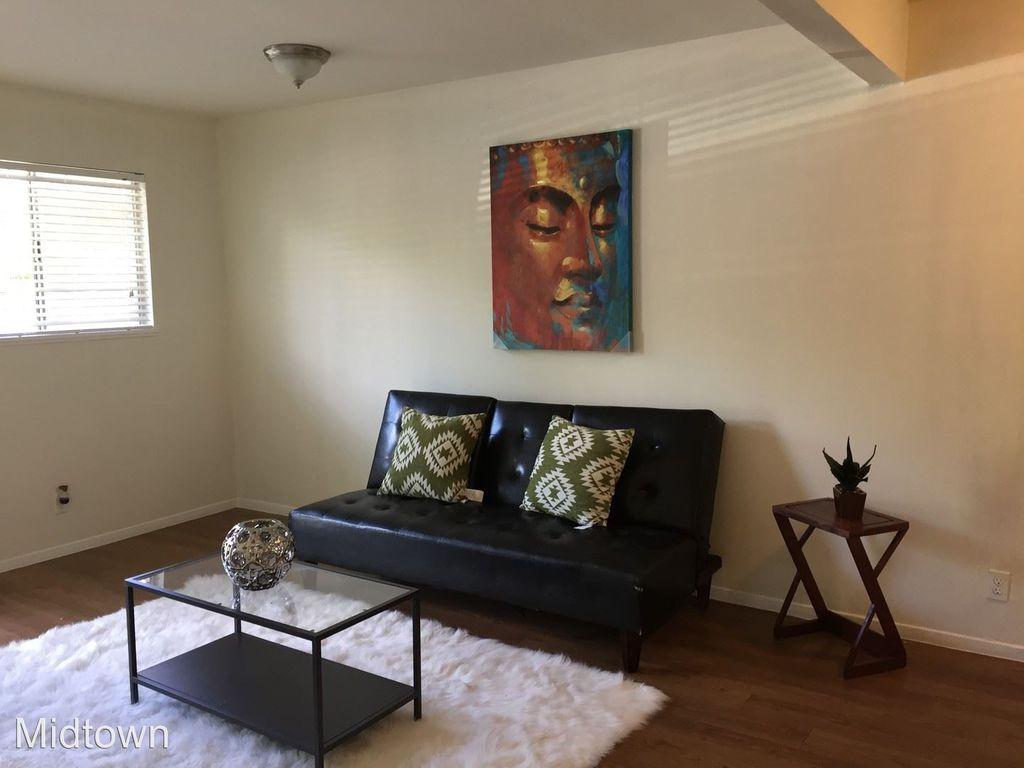 Travis Heights apartment