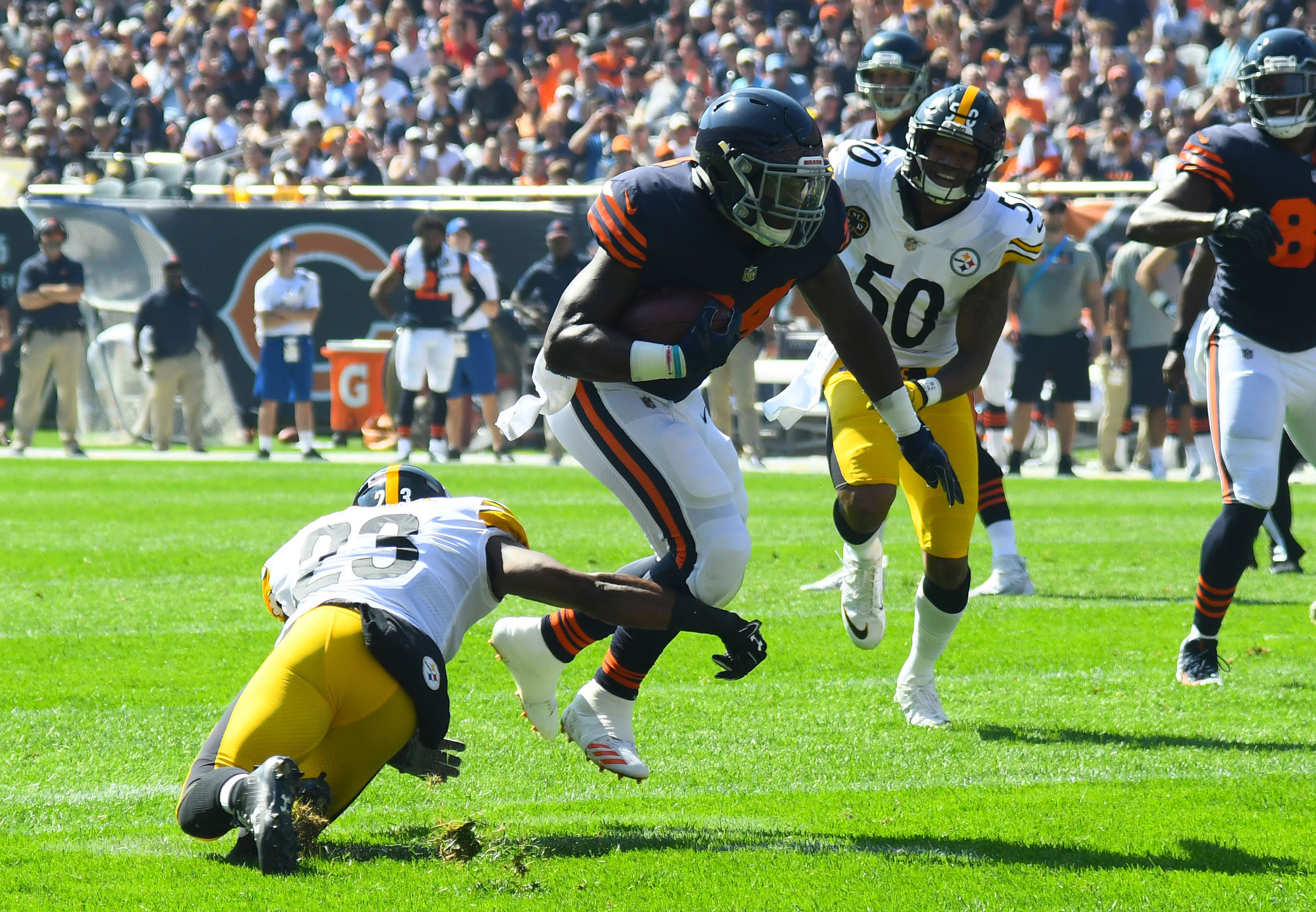 NFL: Pittsburgh Steelers at Chicago Bears