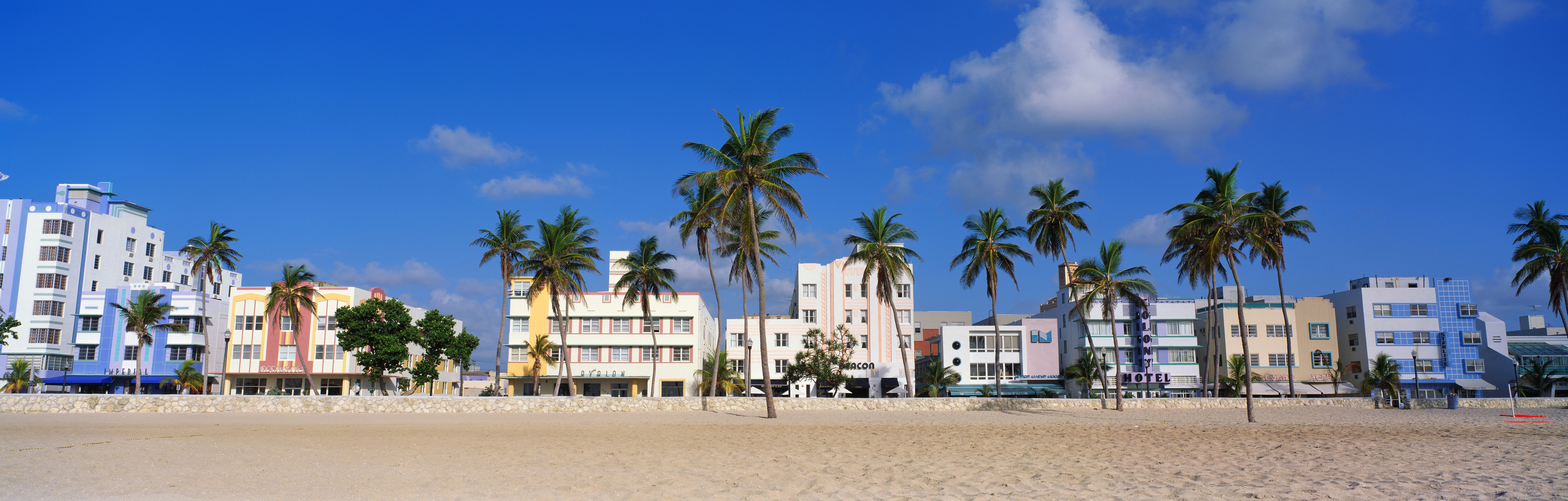 Apartment buildings and palm trees by the beach.