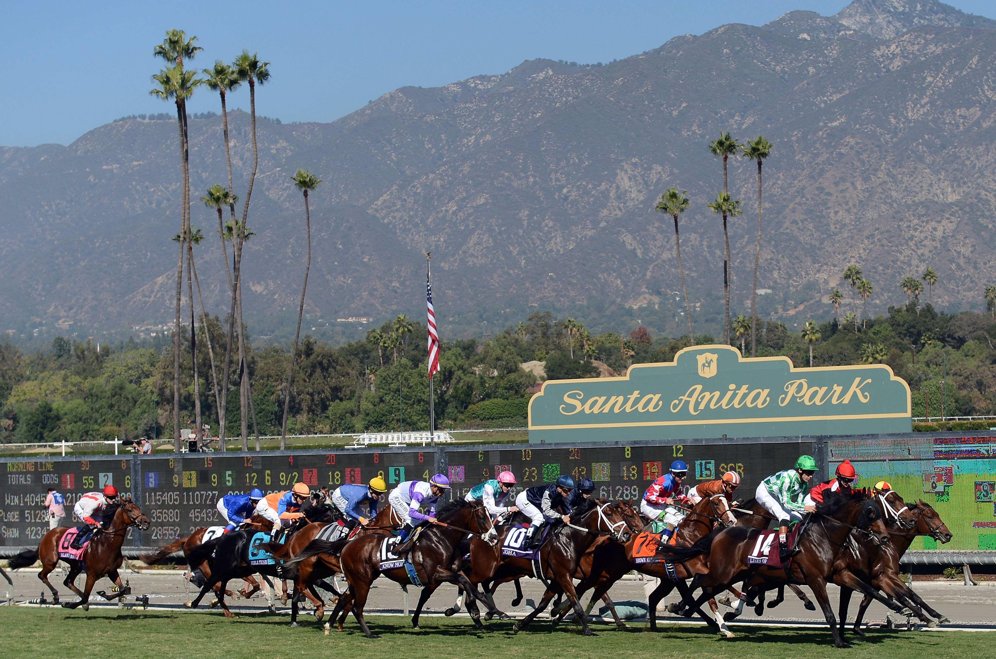 Santa Anita And Down The Stretch They Come