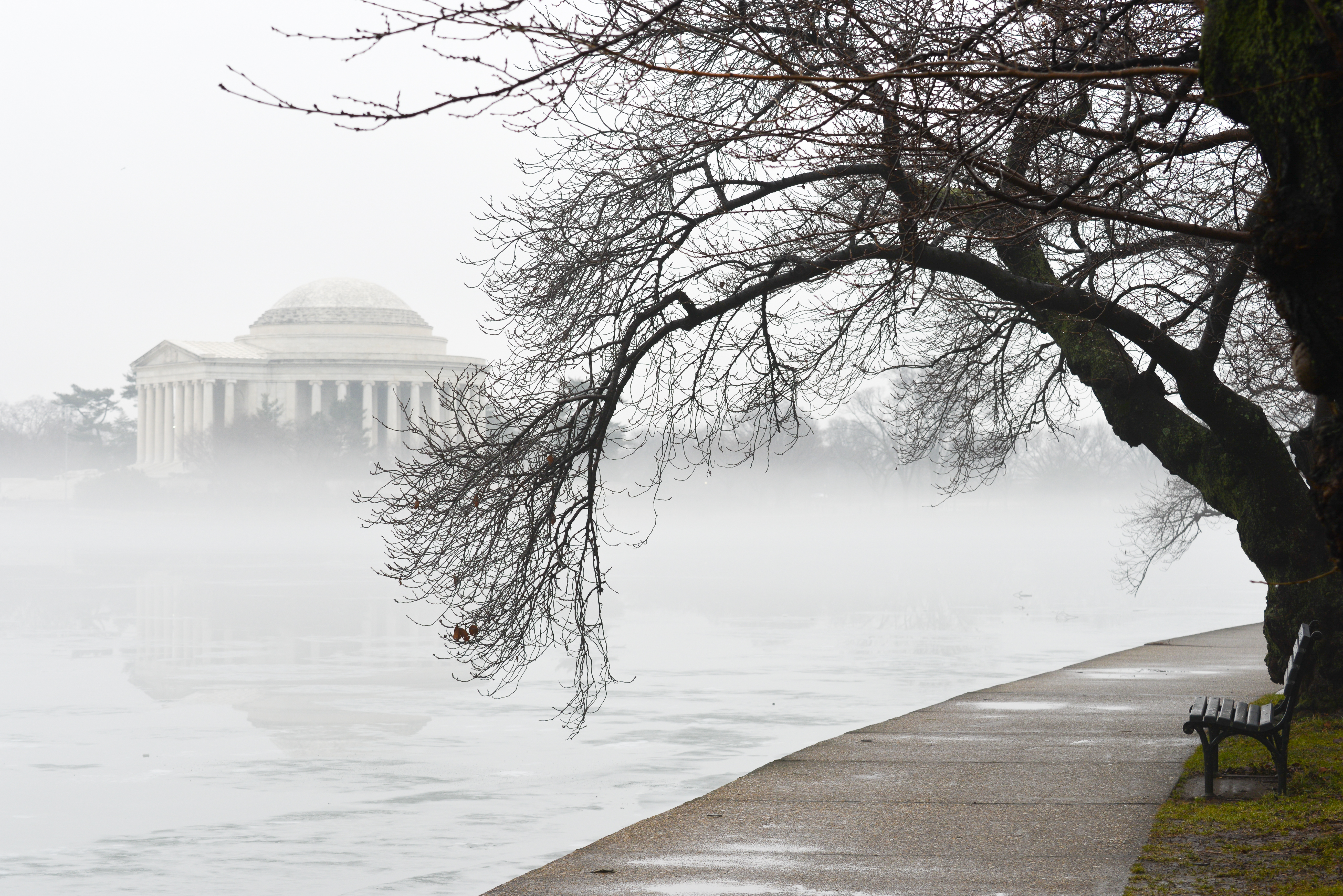 A dead tree hangs over a basin and a walkway. There is a domed monument in the background behind thick fog.