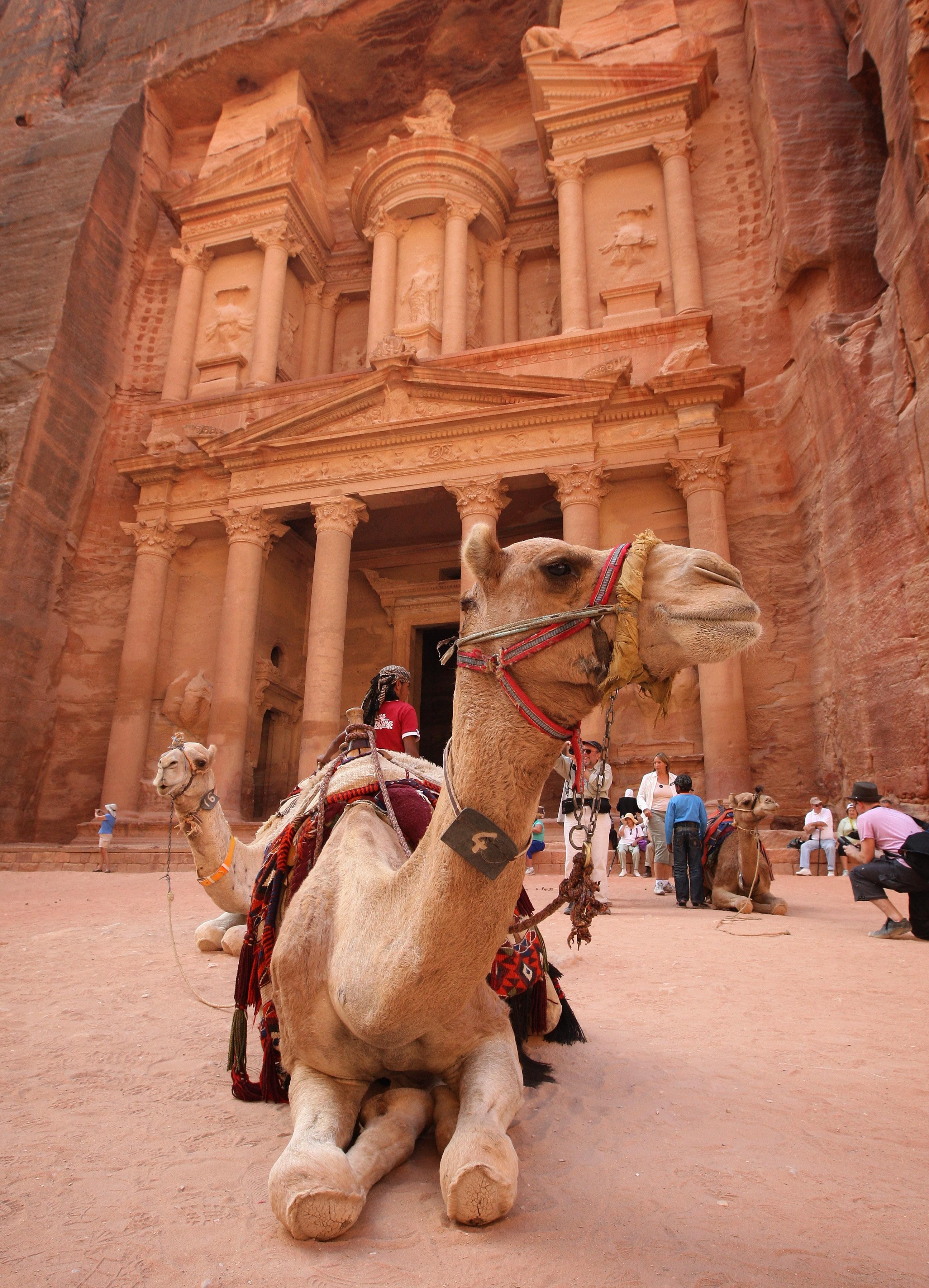 Touring the Petra Desert
