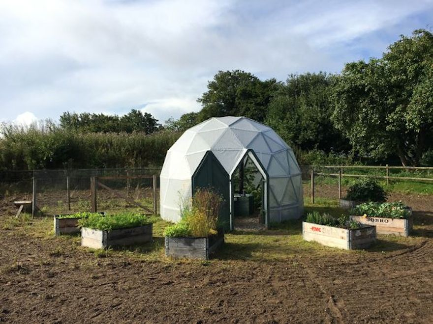 DIY geodesic dome greenhouse and chicken coop was built for $475