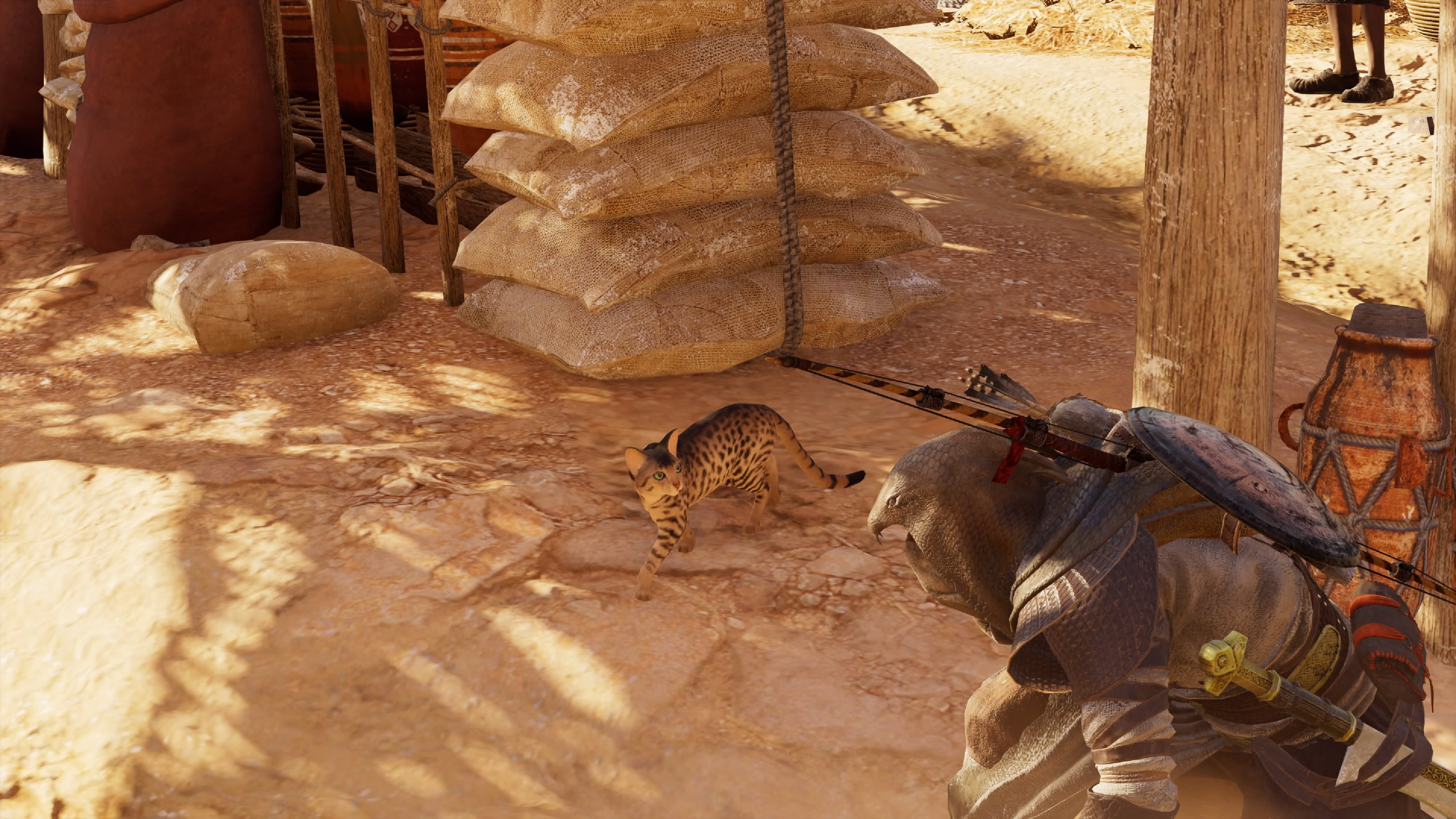 Assassin's Creed Origins: This is how you pet cats