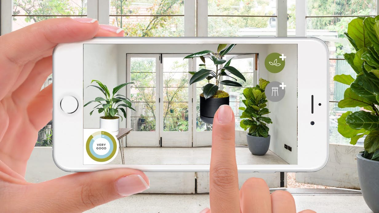 New AR app helps you choose houseplants for improving air quality