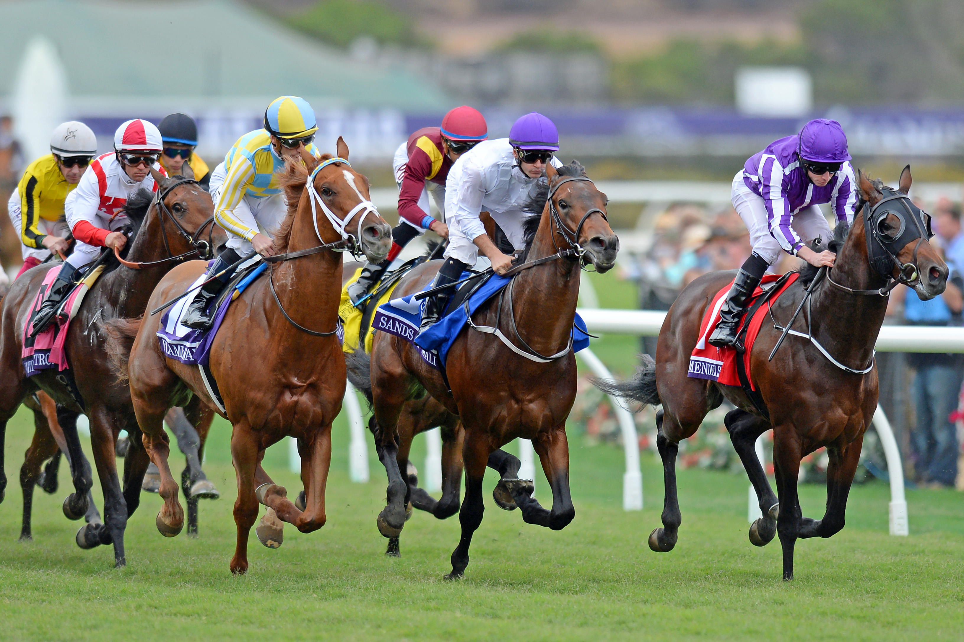 Horse Racing: 34th Breeders Cup World Championships