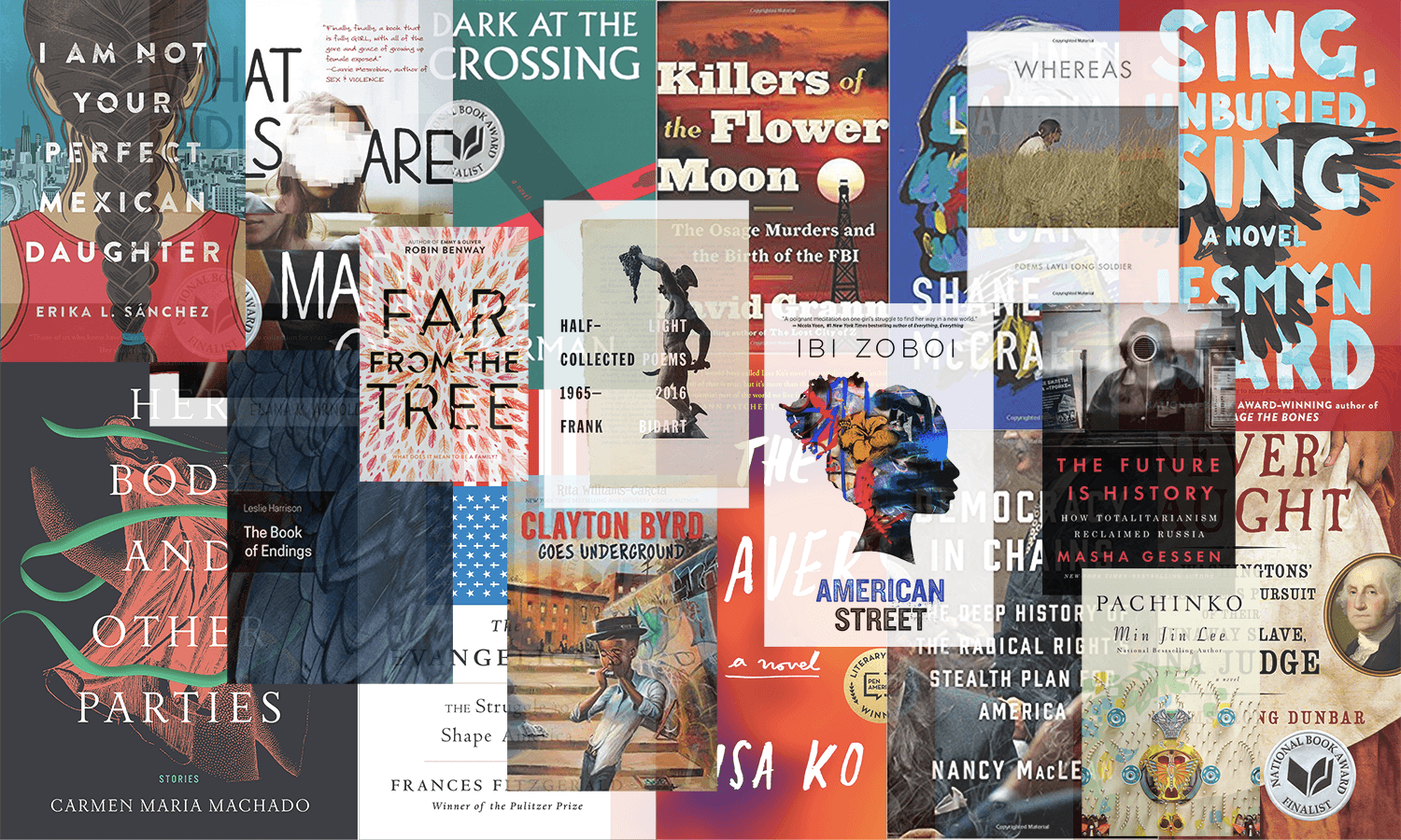 We read 2017's National Book Award nominees. Here's what we thought. - Vox