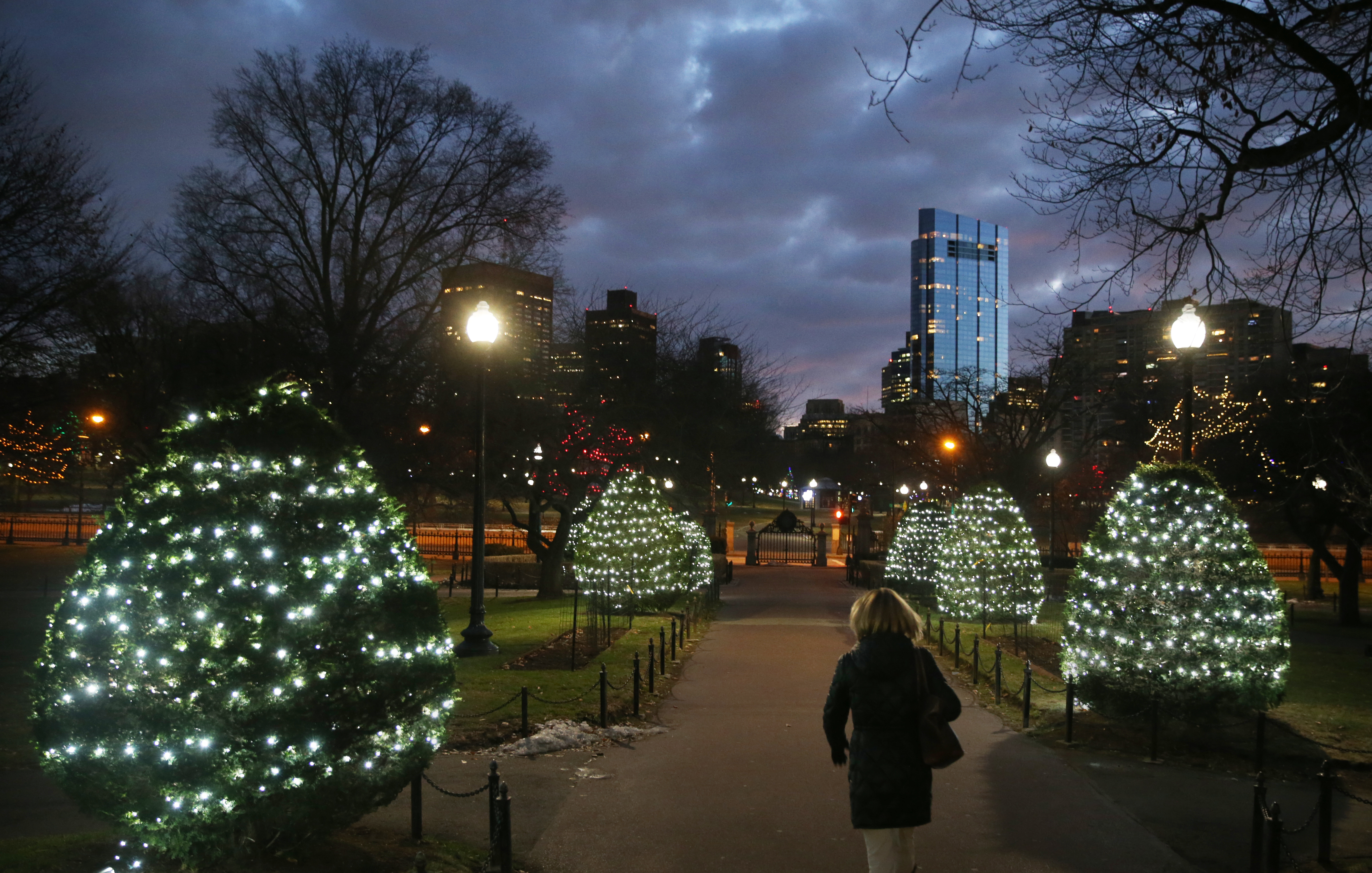 A person walking between two rows of illuminated bushes at night in a public park in a city.