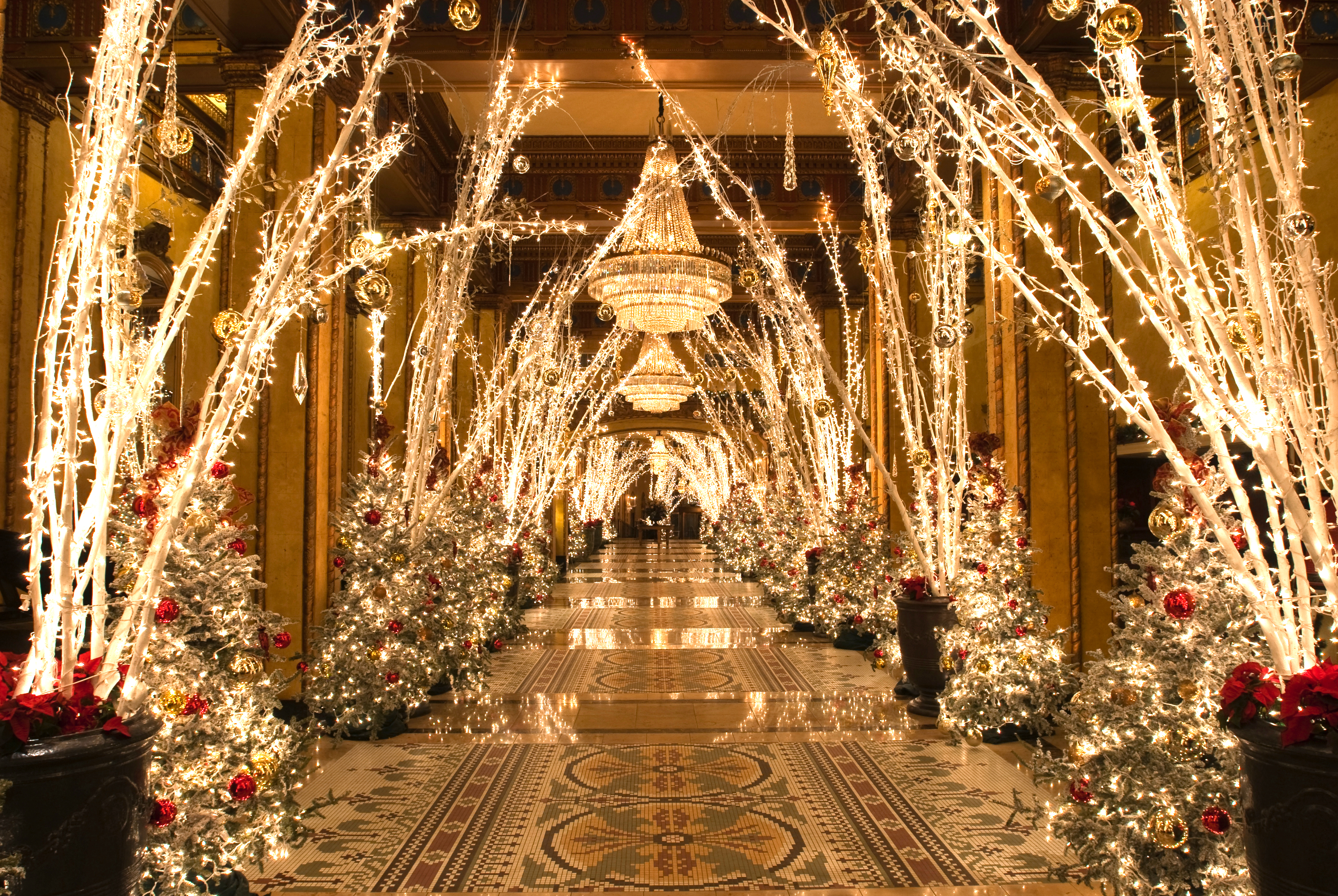 The interior of the Roosevelt in New Orleans. The hallway has tree branches with white holiday lights on both sides. There are multiple chandeliers hanging.