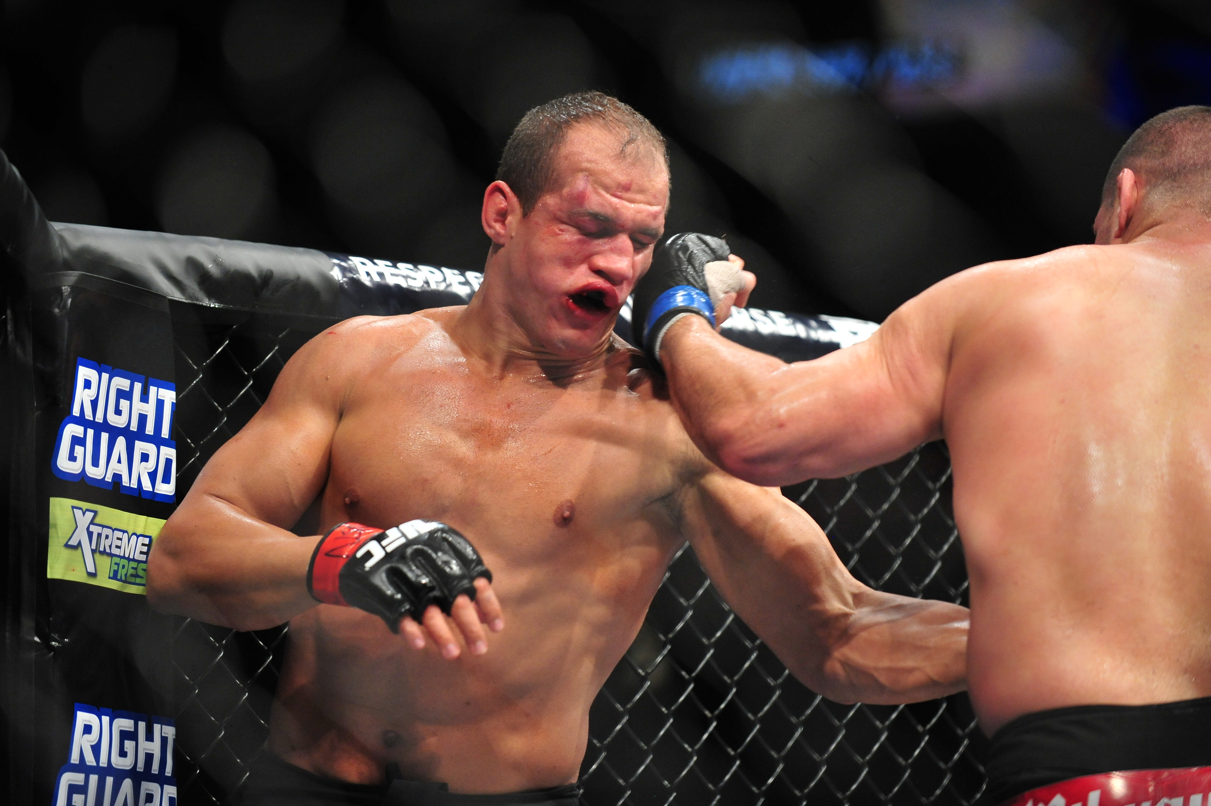 UFC 155: Dos Santos vs. Velasquez 2 - Bloody Elbow