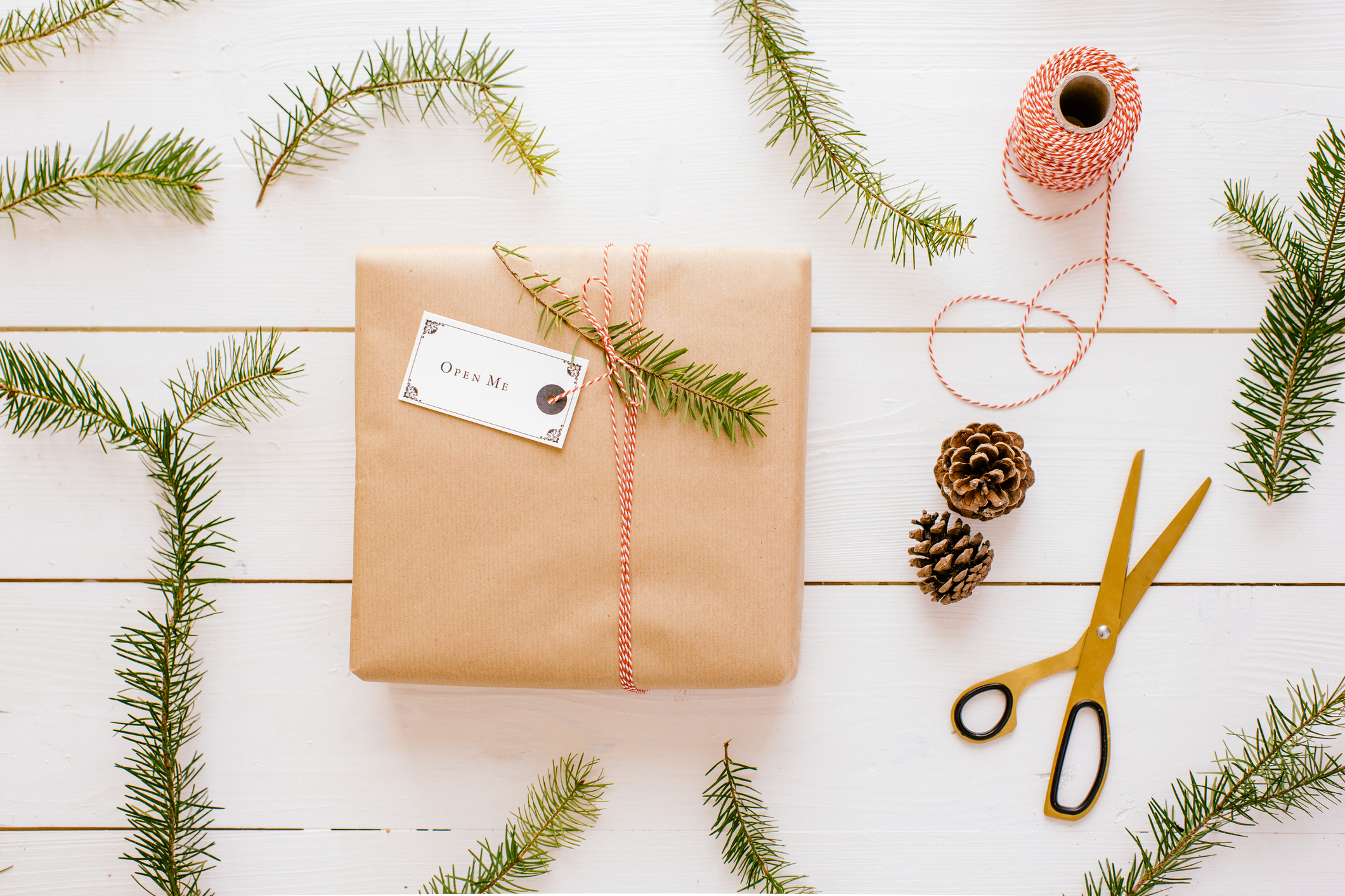 A Christmas gift wrapped in brown paper surrounded by pine.
