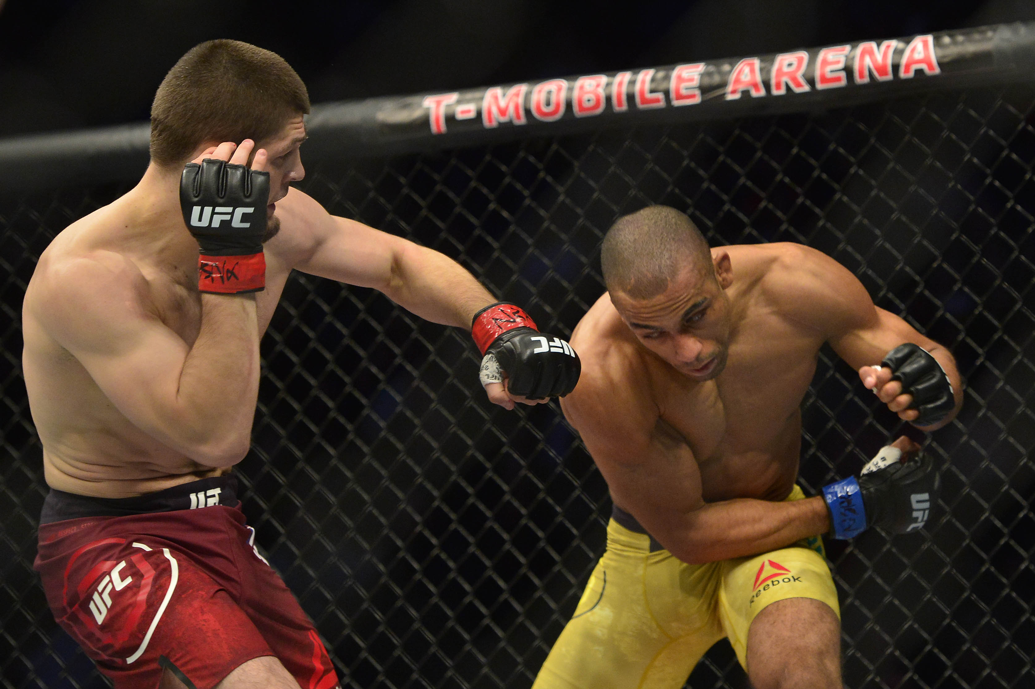 Картинки по запросу UFC