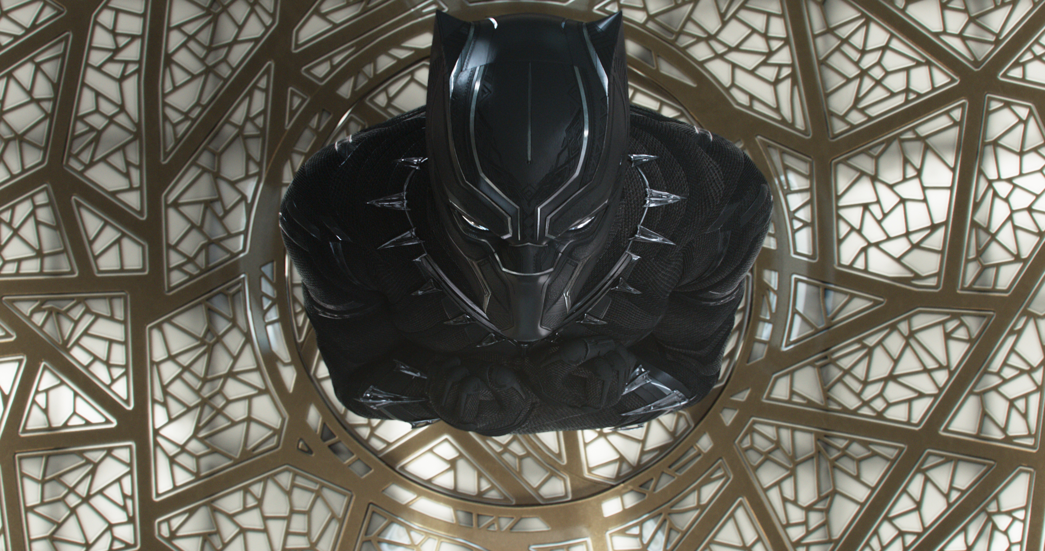 Black Panther, explained