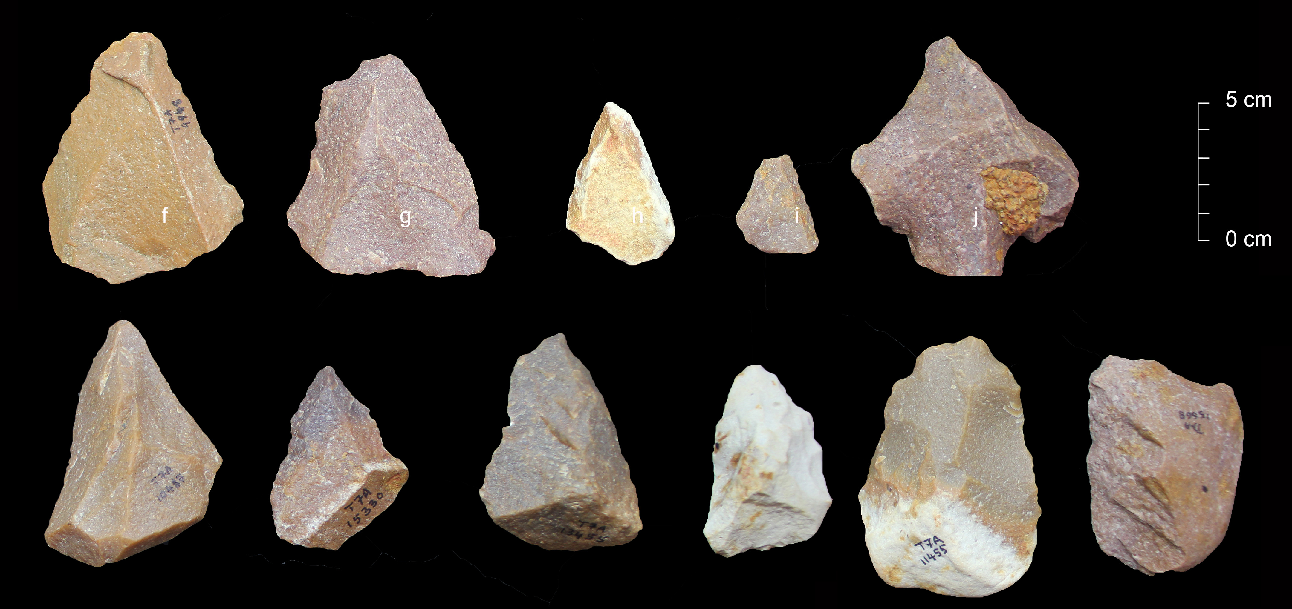 Stone tools recovered at the Attirampakkam site in India.