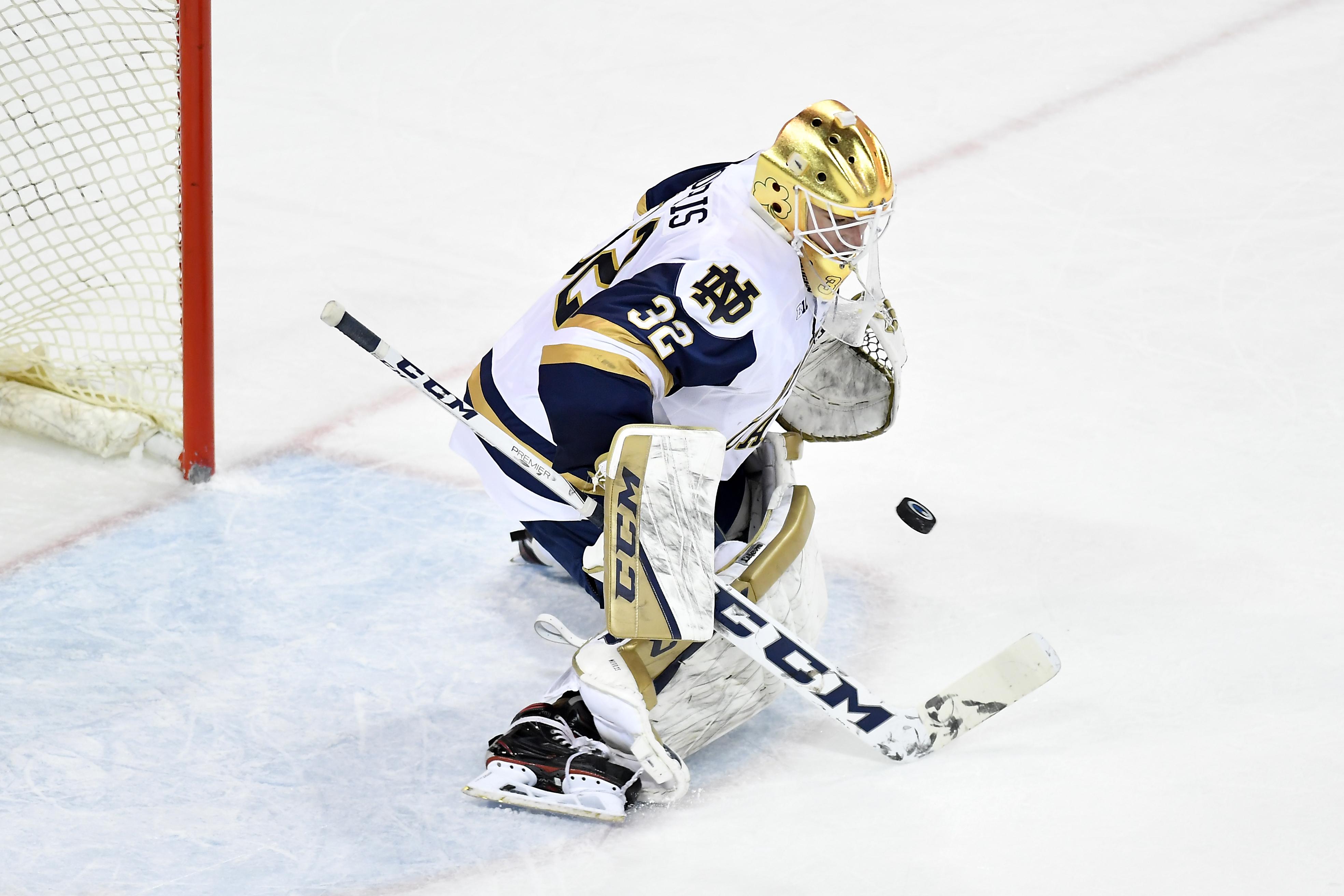 COLLEGE HOCKEY: JAN 07 Michigan at Notre Dame