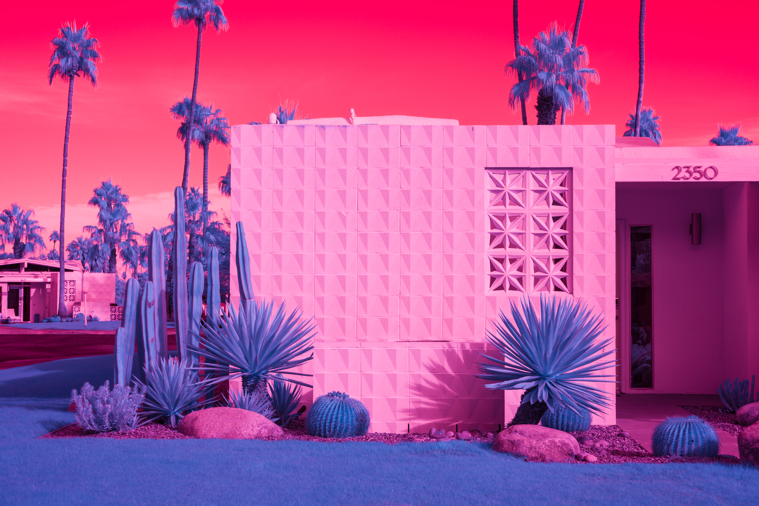 Photo taken with infrared lens and light filters of a midcentury house whose pale surface turns pink and the cacti and palm trees surrounding it blue.