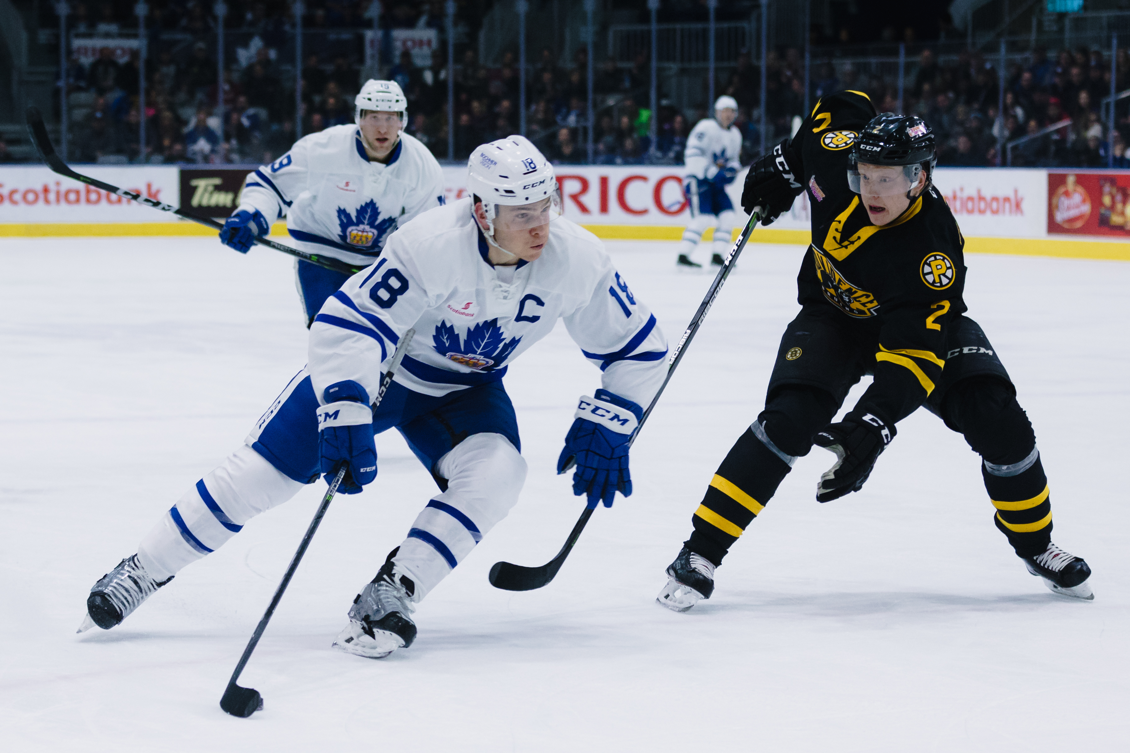 Toronto Maple Leafs Schedule  Roster  News  And Rumors