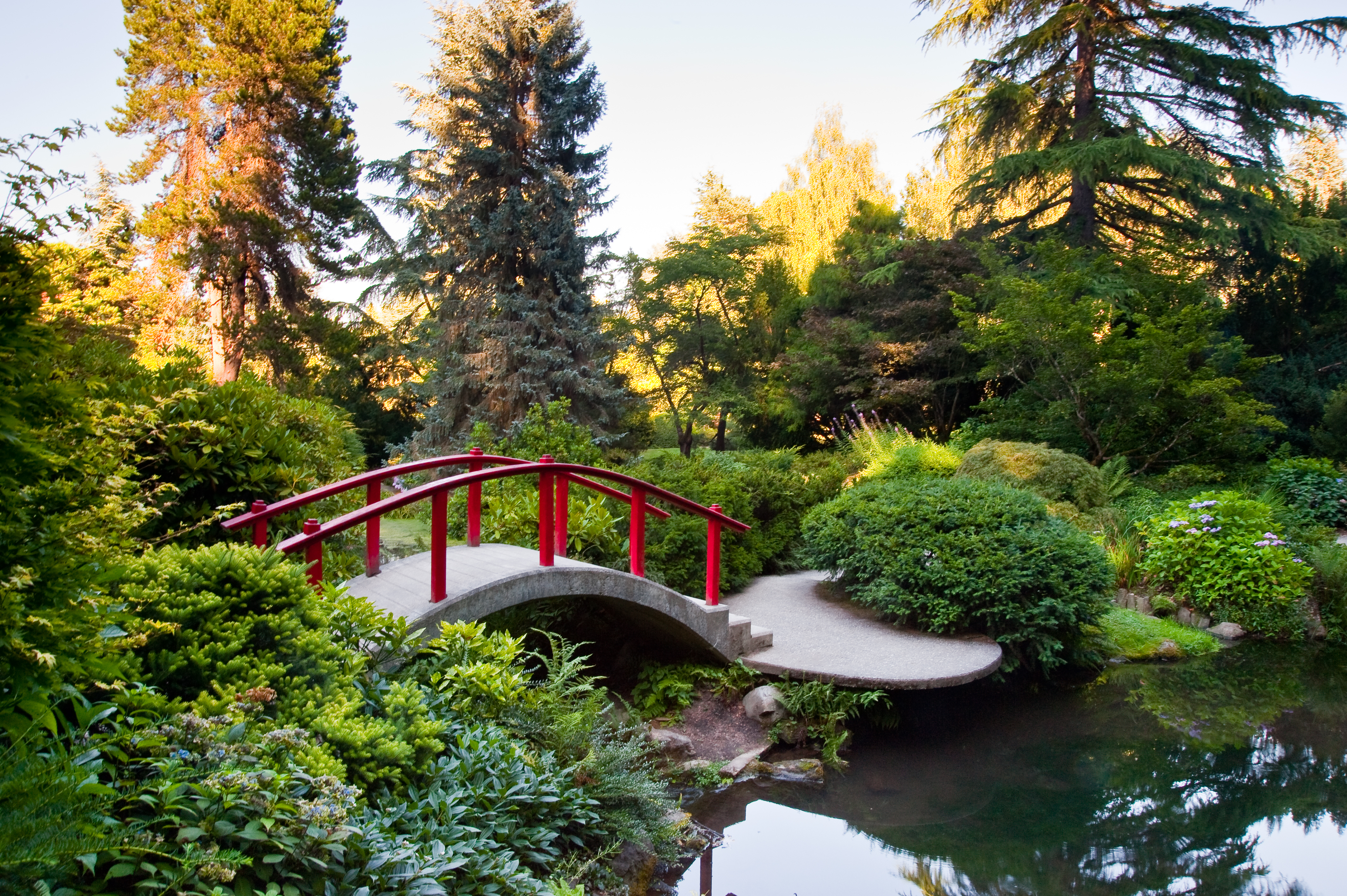 A garden with assorted trees, plants, and shrubbery in Seattle. There is a small bridge over a still body of water. The bridge has red railings and a grey concrete base.