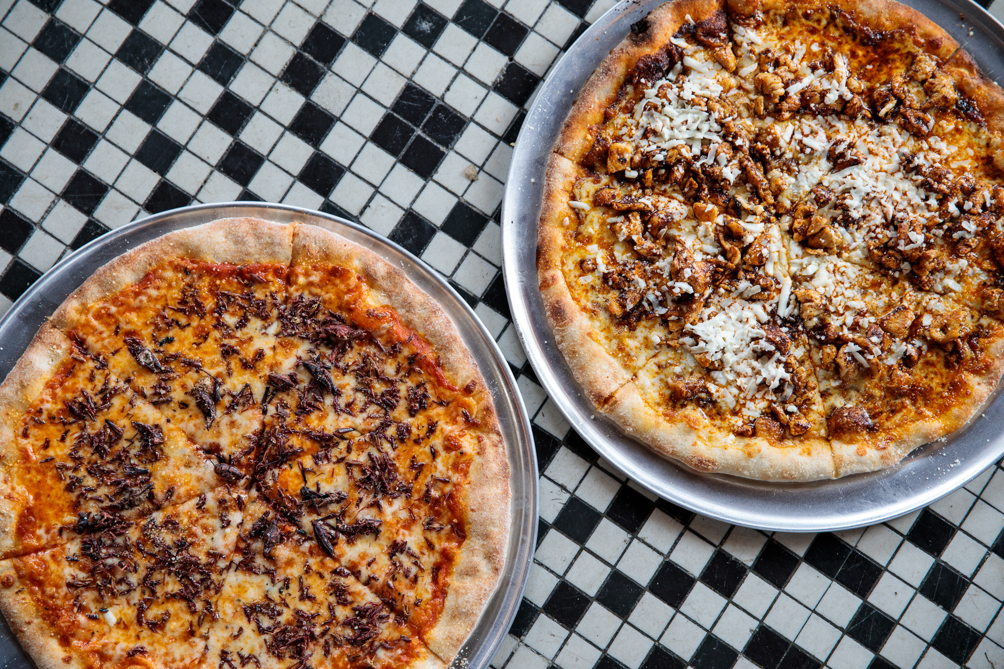 A chicken mole pizza and a chapulines cricket pizza on a checkered tile floor.
