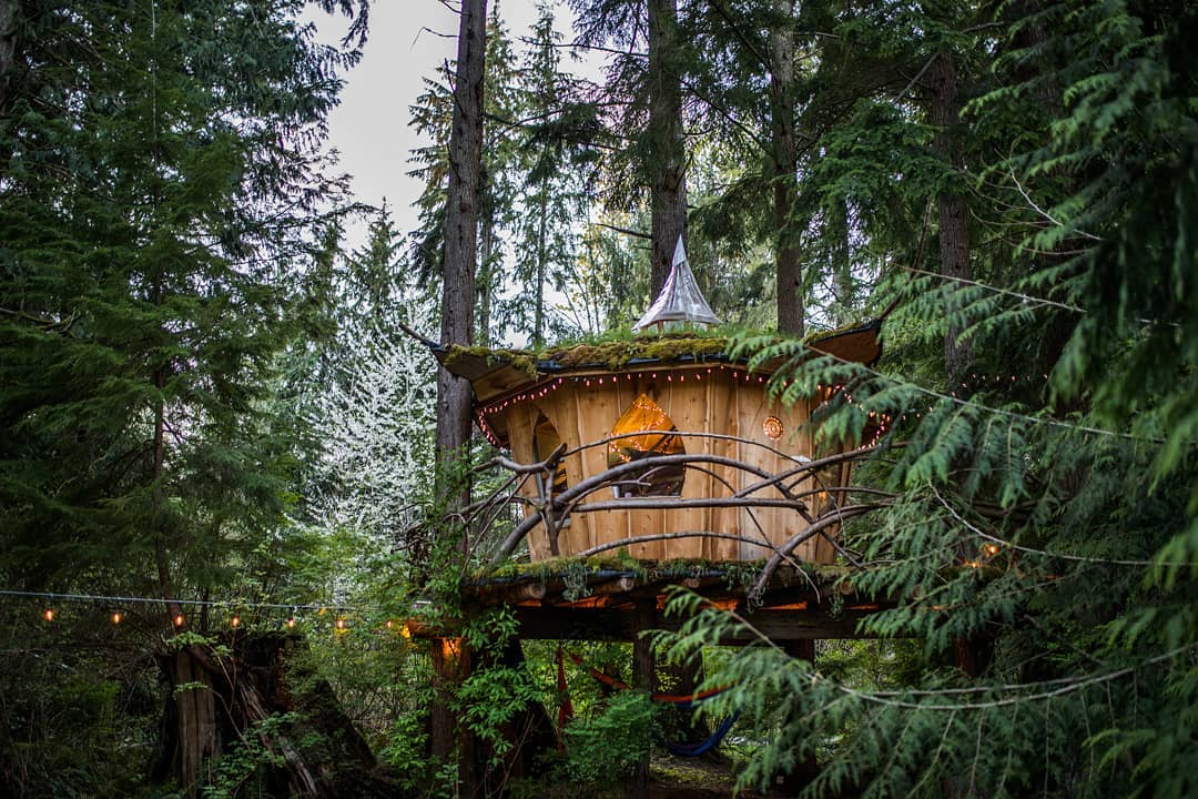 A round treehouse has a roof with a dramatic peak at the center. There's a wraparound deck with a railing made of branches It's surrounded by evergreen trees.