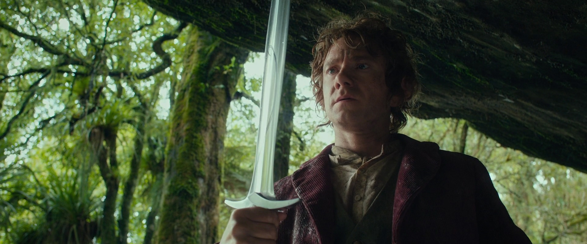 A new Lord of the Rings book is out this year