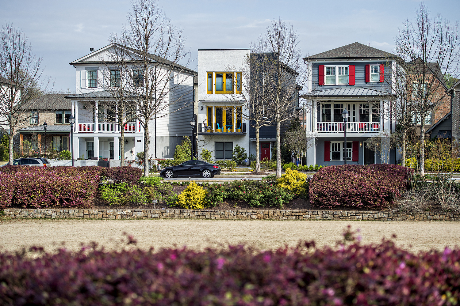 A photo of single-family homes along Glenwood Park Drive and the neighborhood's functional green space.