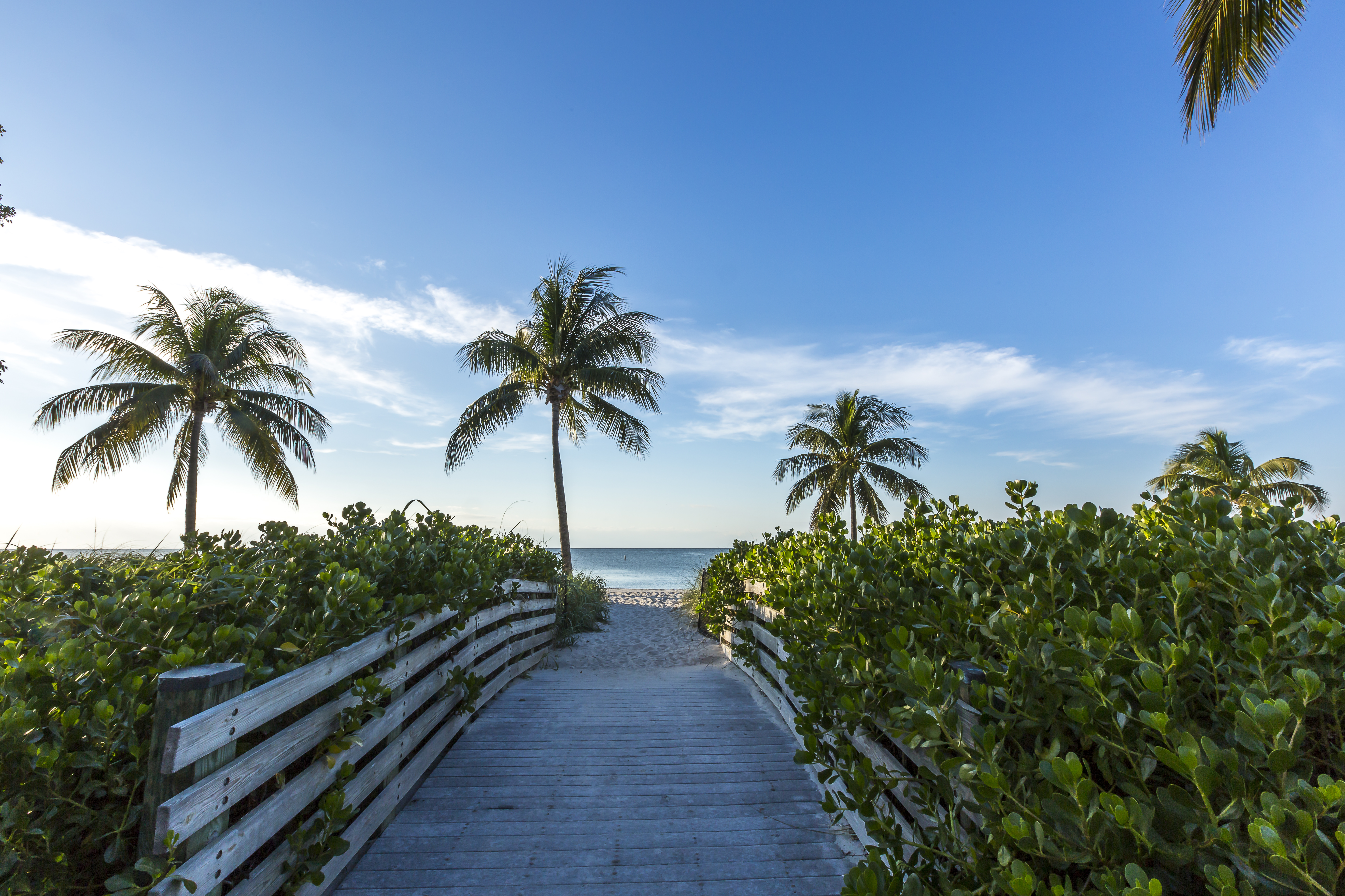 Miami homes neighborhoods architecture and real estate curbed miami floridians will need a court order to access private beaches this summer fandeluxe Choice Image