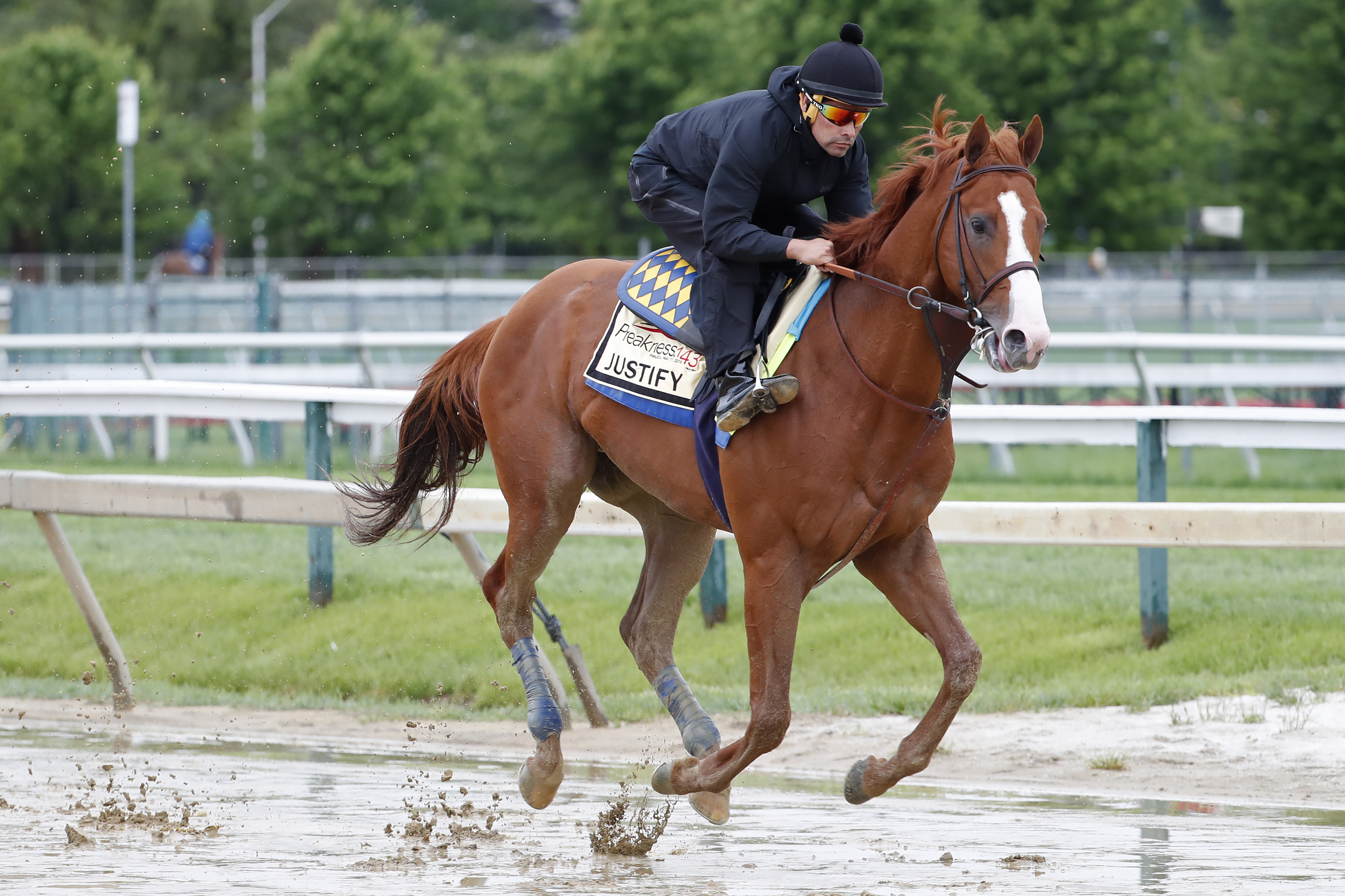 Horse Racing: Preakness Workouts