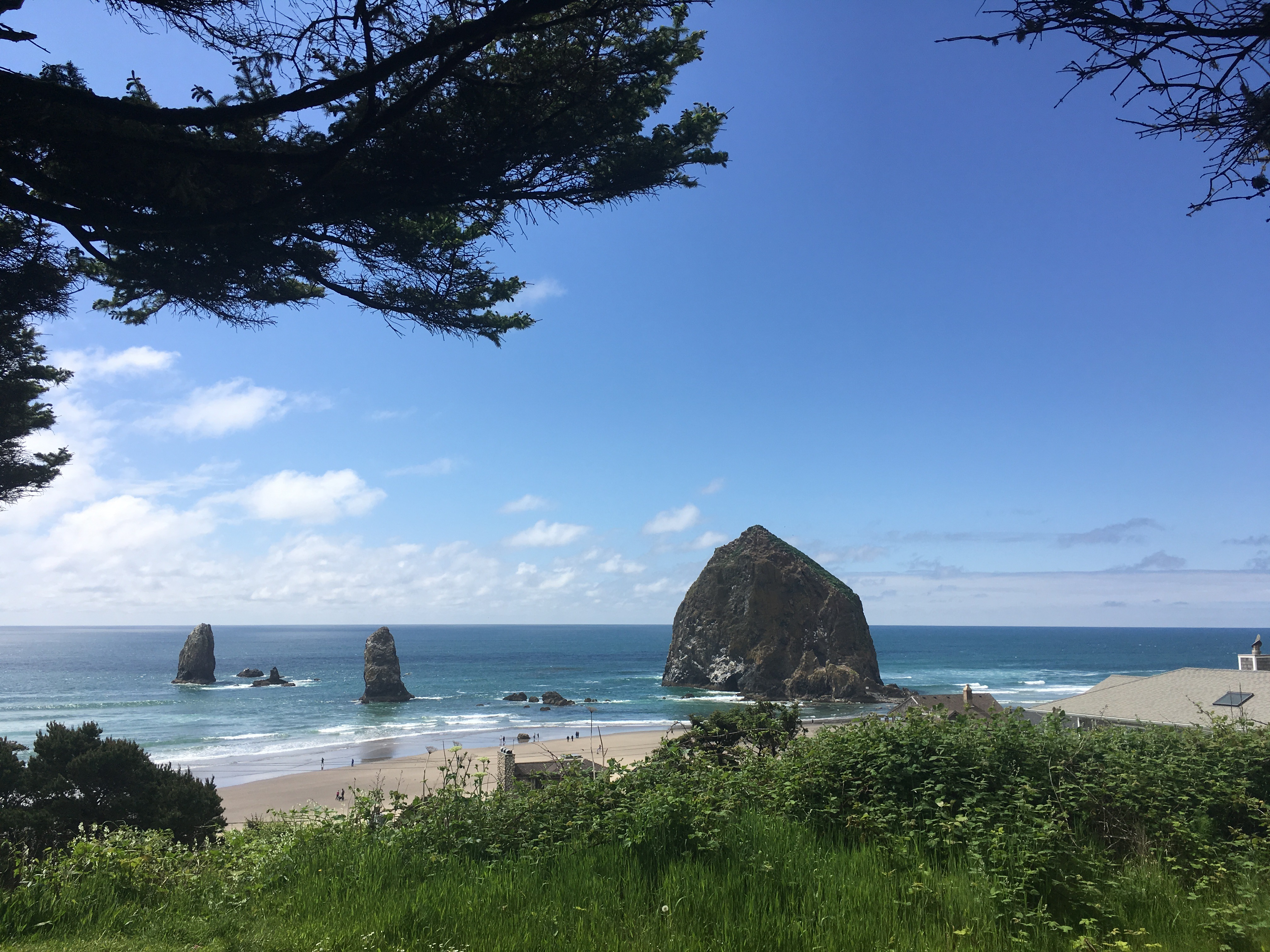 Haystack Rock within the ocean water near a beach in Cannon Beach, Oregon